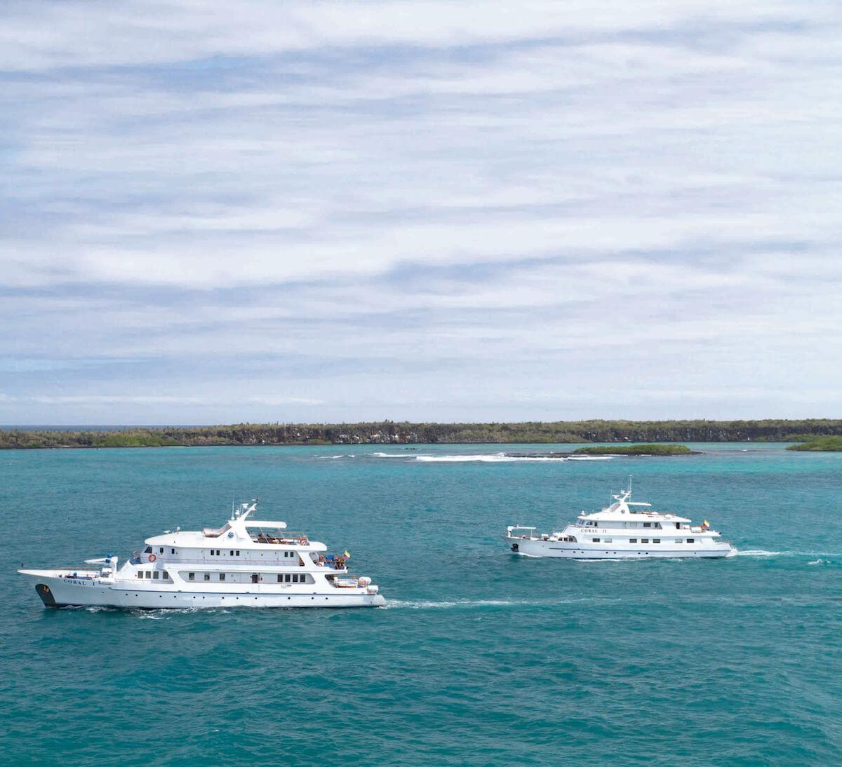 Galapagos Cruise Deals