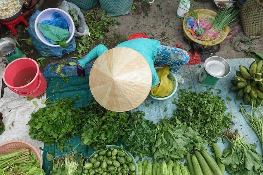 Seasons in Vietnam