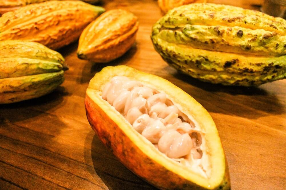 Cacao Amazon Superfood