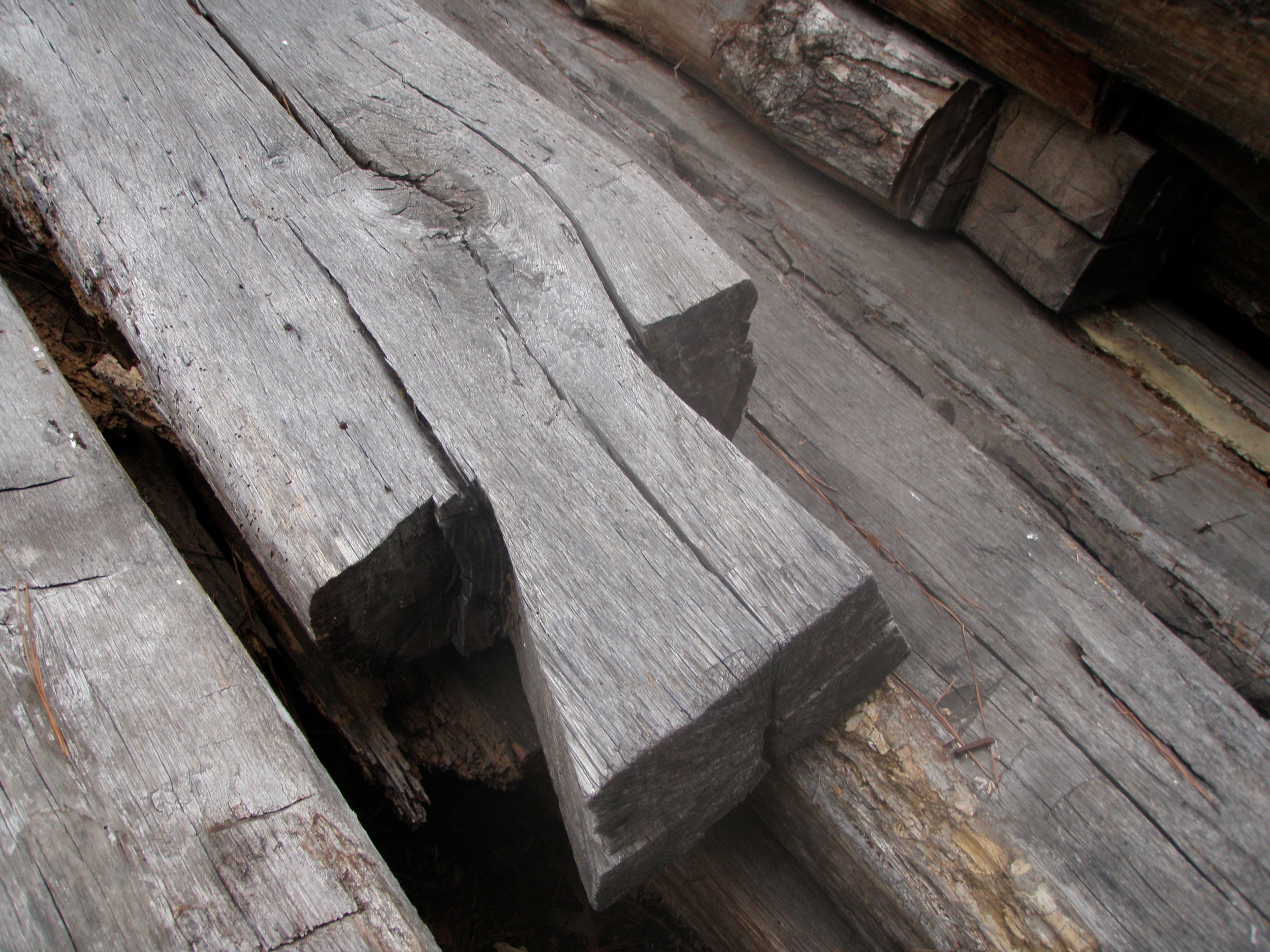 100 year old dovetail - beautiful!