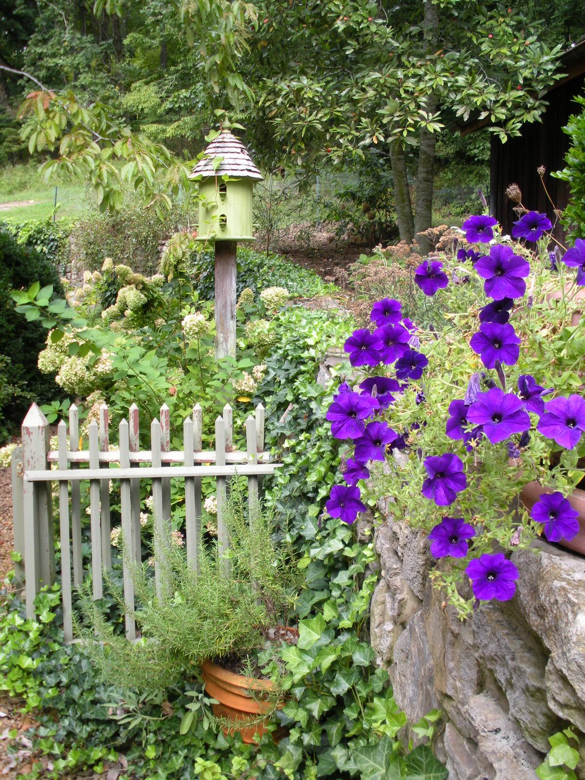 Justin Stelter Landscape Gardening - Country Garden - Justin Stelter Landscape Gardening - Country Garden2886239049_0f6df8769f_o.jpg