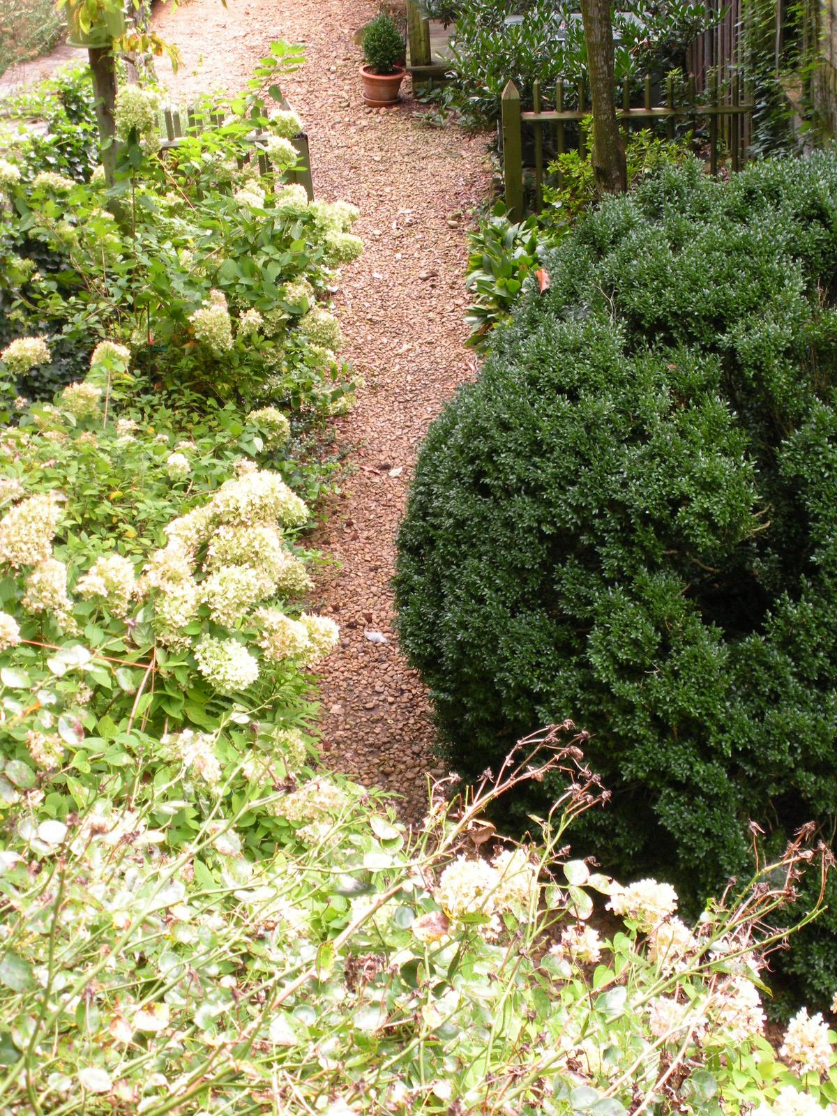 Justin Stelter Landscape Gardening - Country Garden - Justin Stelter Landscape Gardening - Country Garden2887095824_6012c889e2_o.jpg
