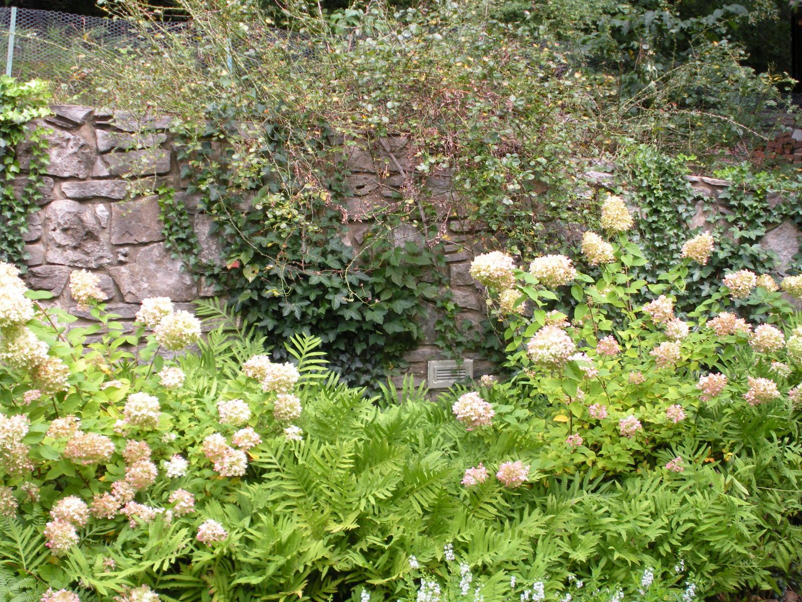 Justin Stelter Landscape Gardening - Country Garden - Justin Stelter Landscape Gardening - Country Garden2887105134_cab0864e30_o.jpg