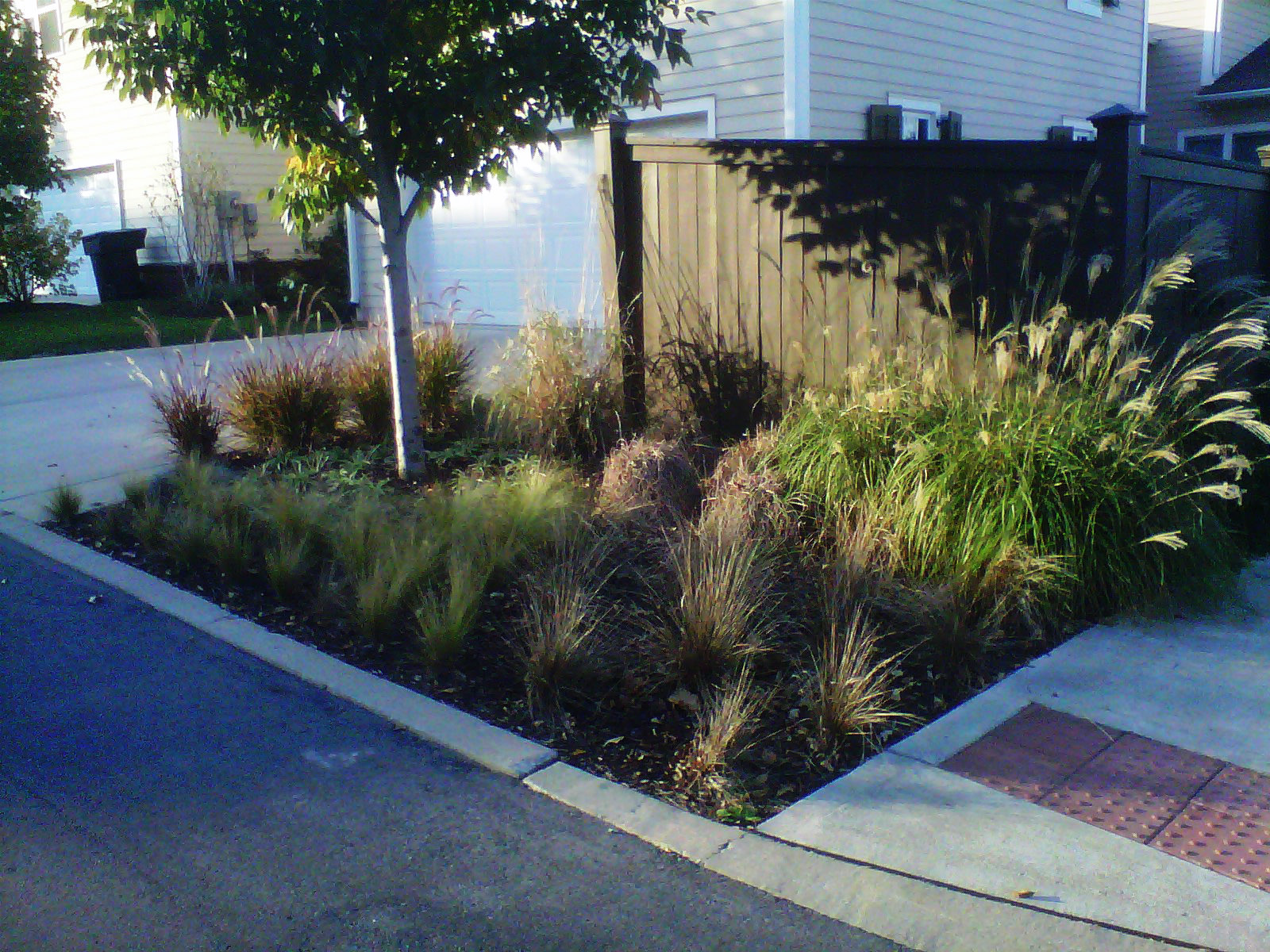 Justin Stelter Landscape Gardening - Modern Suburban Landscaping - 12591616935_b4d9ce9ba3_o.jpg