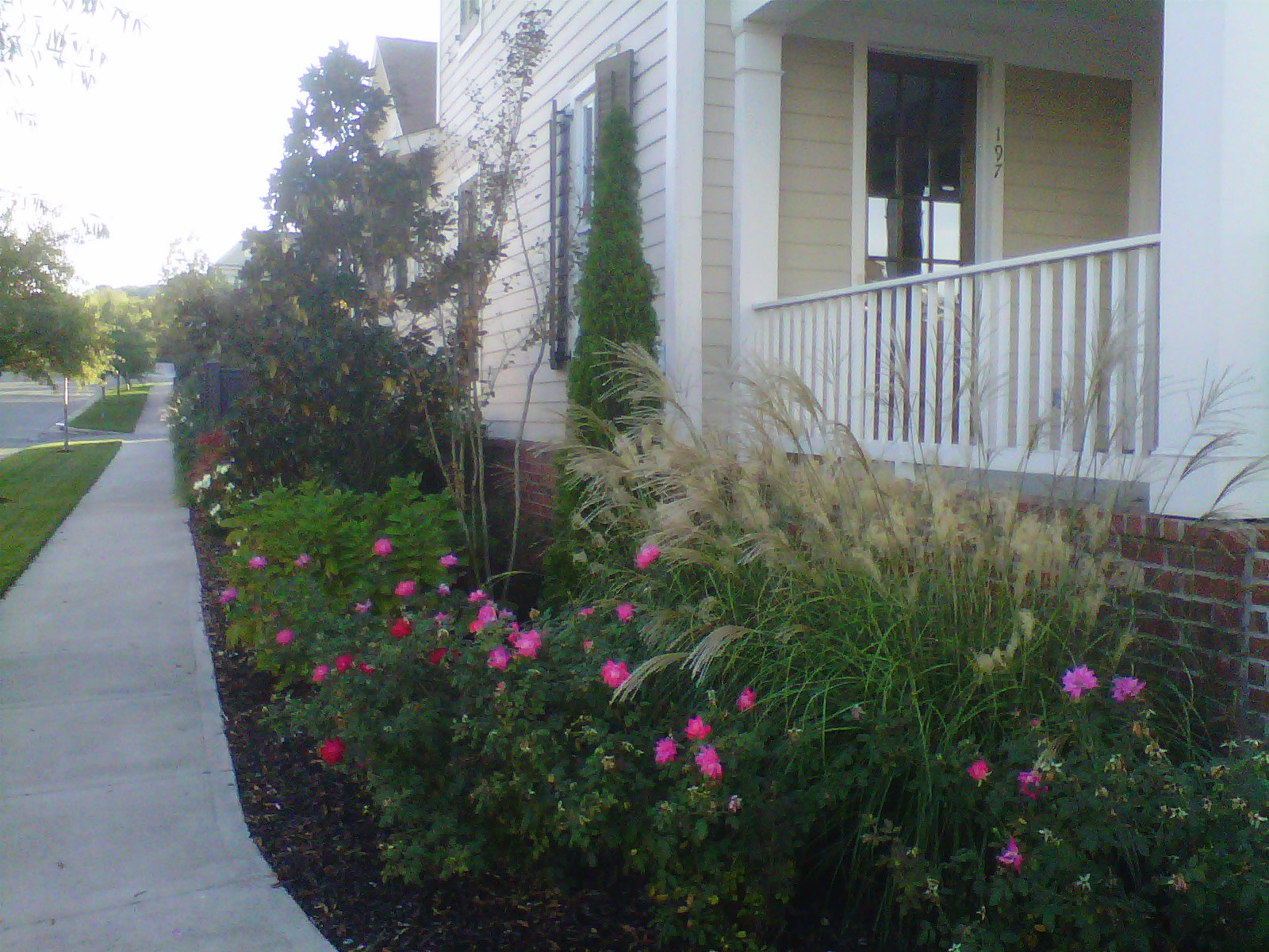 Justin Stelter Landscape Gardening - Modern Suburban Landscaping - 12591729973_f2a0c88c0c_o.jpg