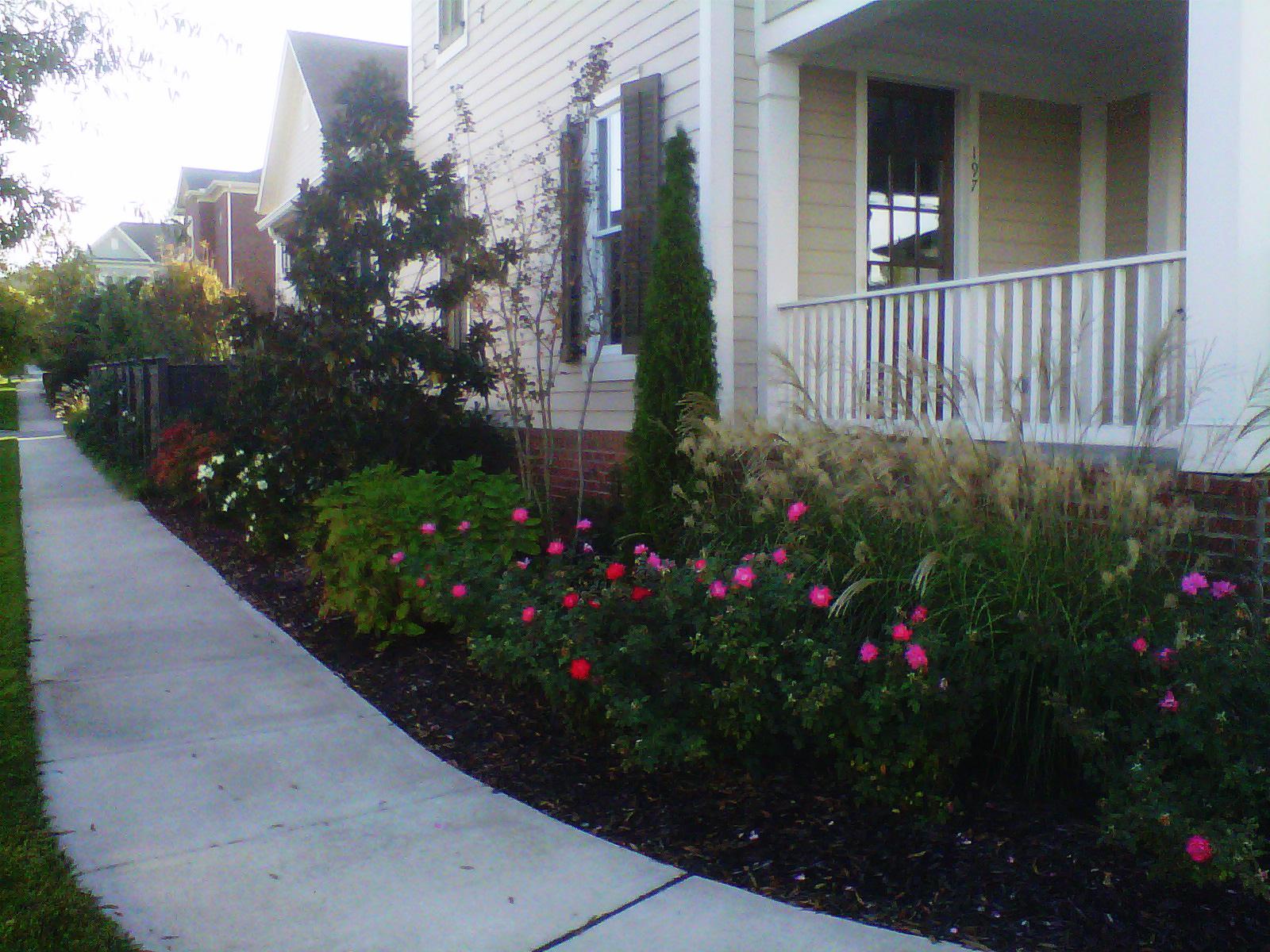 Justin Stelter Landscape Gardening - Modern Suburban Landscaping - 12591730903_eec2a65fda_o.jpg