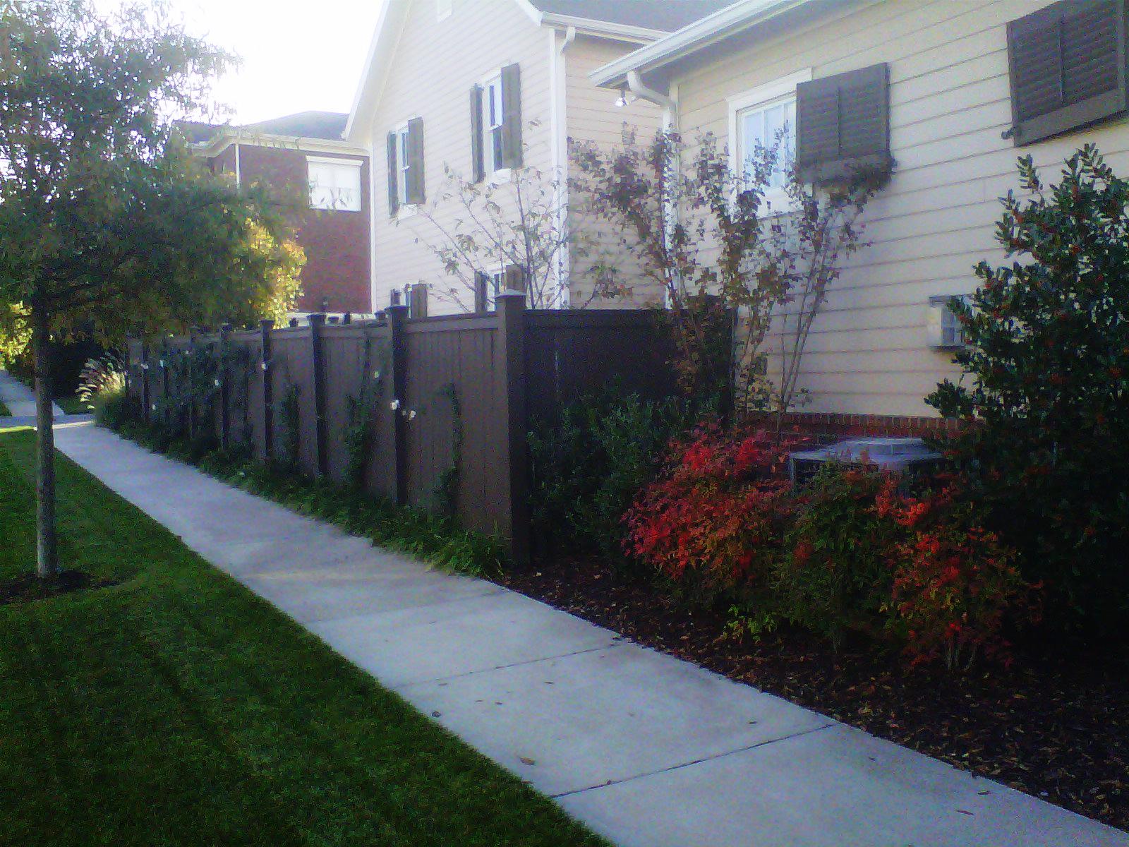 Justin Stelter Landscape Gardening - Modern Suburban Landscaping - 12592059964_97db921cf0_o.jpg