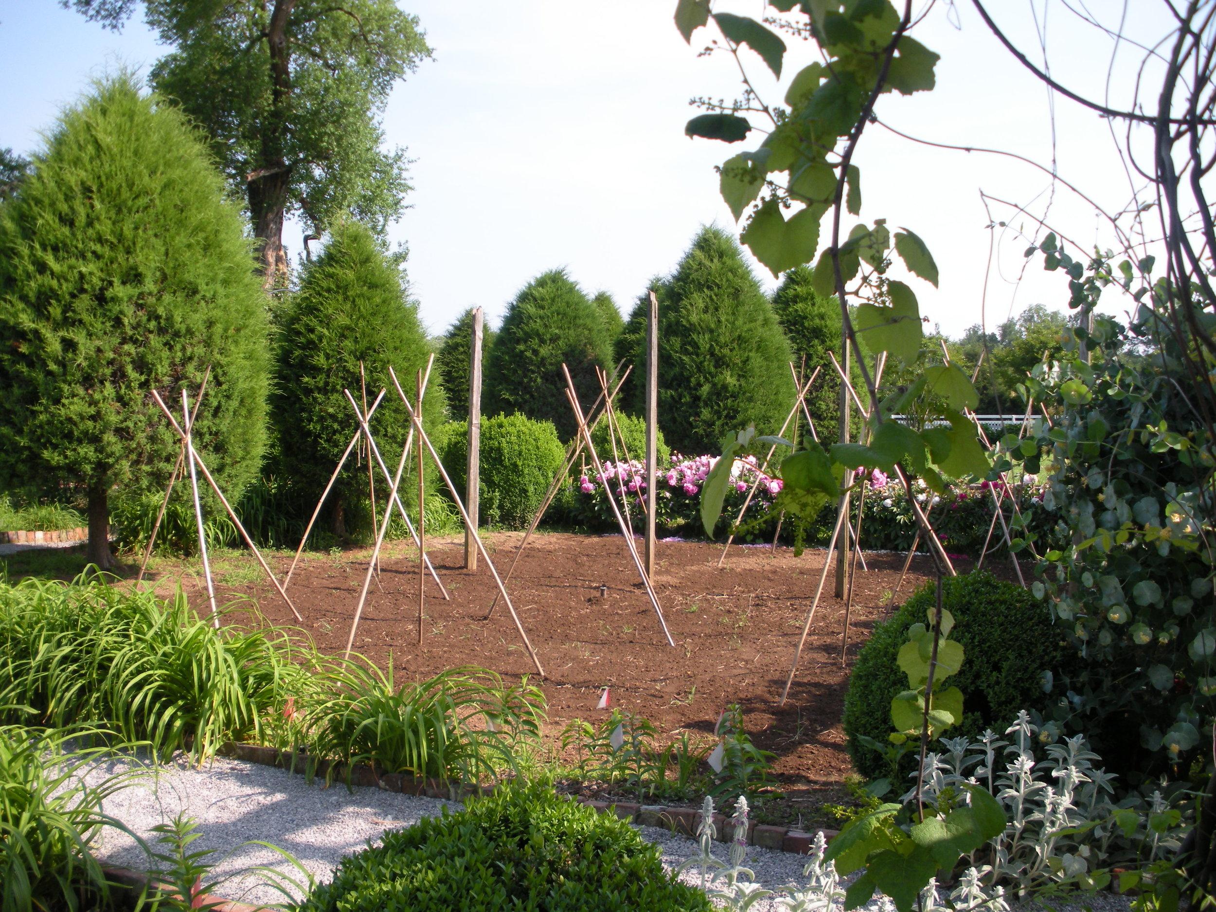 Carnton Garden 019.JPG