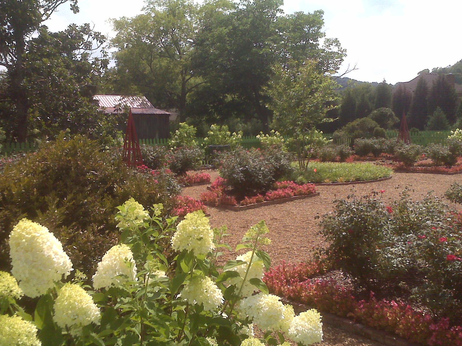 1st garden southwestward early summer 2010.jpg