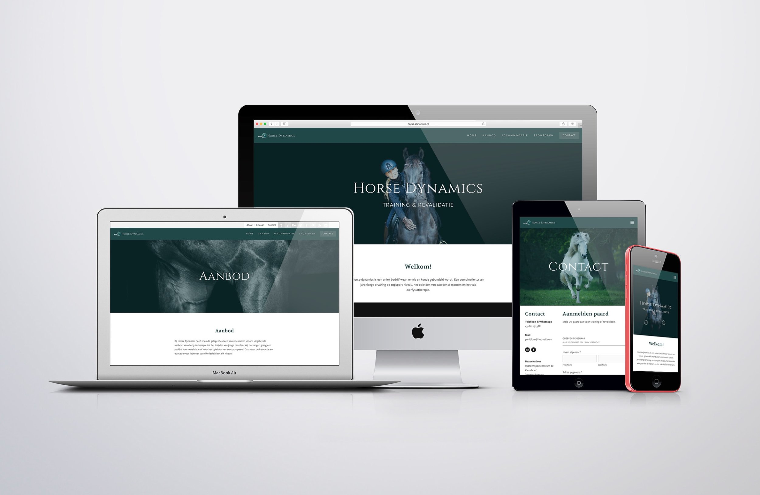 Photography, logo design and website for Horse Dynamics