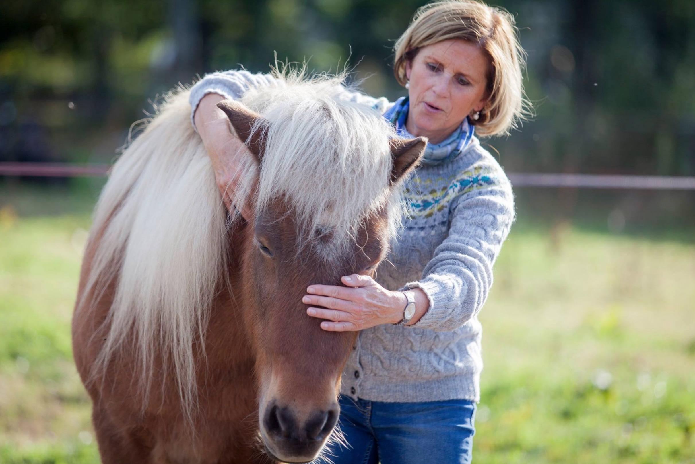 Paardadvies-Tessa-Denn-paarden-coaching-Myra-Wippler-10.jpg