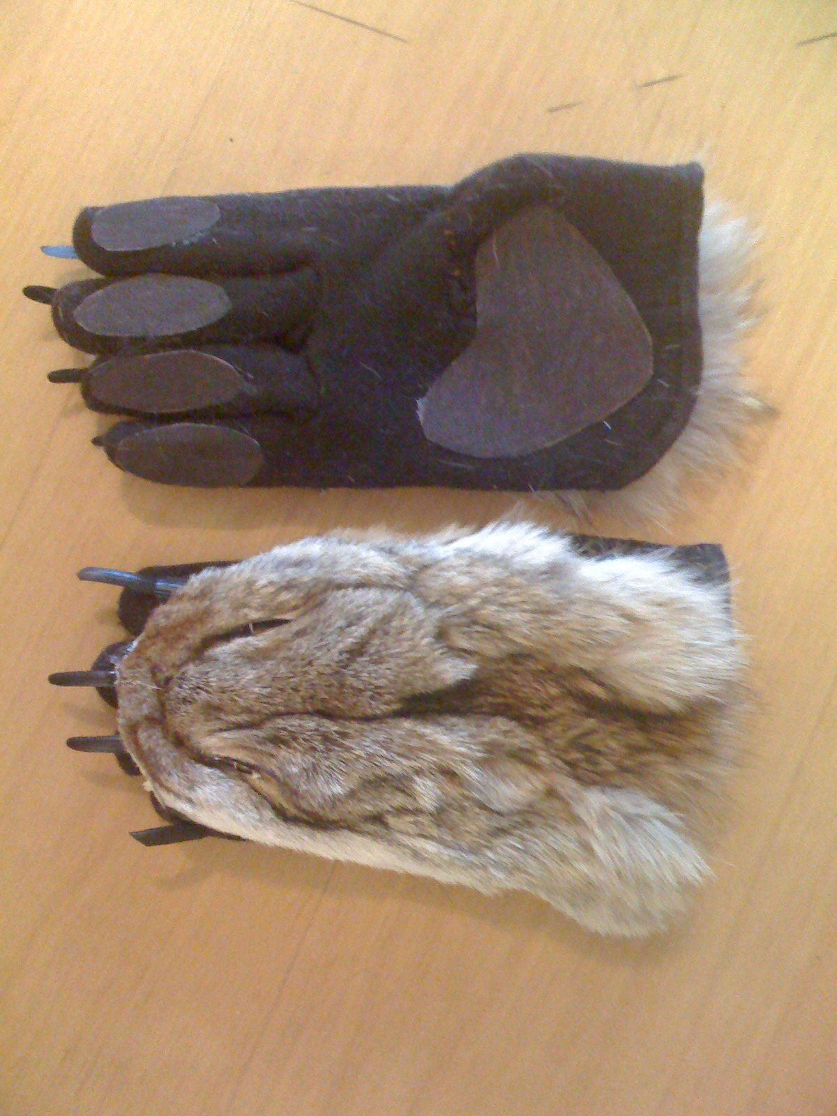 Wolf Paws