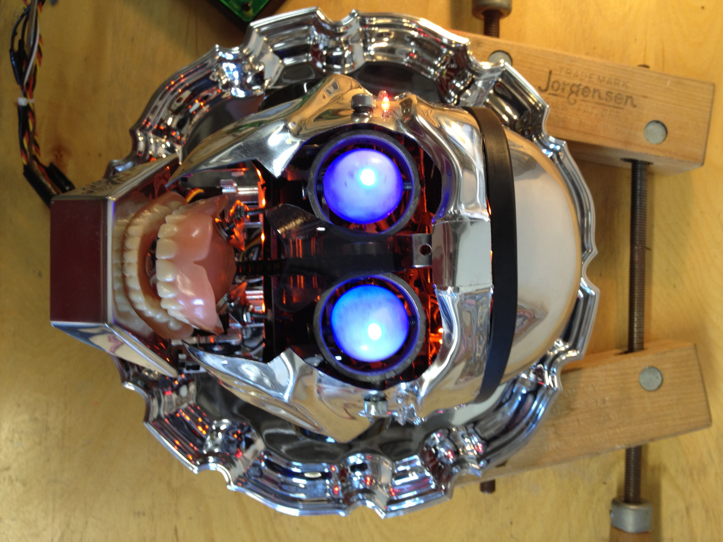 Desi's Robotic Head