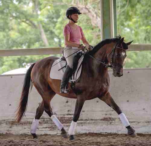 Adella, another horse I started at Valhalla. She went on to be a hunter. Erin Brinkman in the saddle, photo by Shannon Brinkman