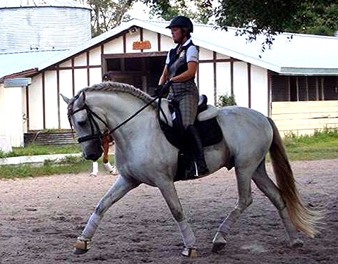 Me riding Iris Eppinger's Andalusian stallion