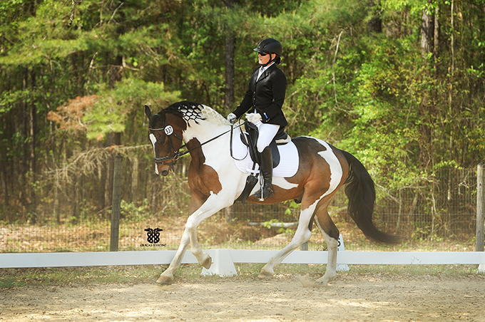 Tucci show canter.jpg