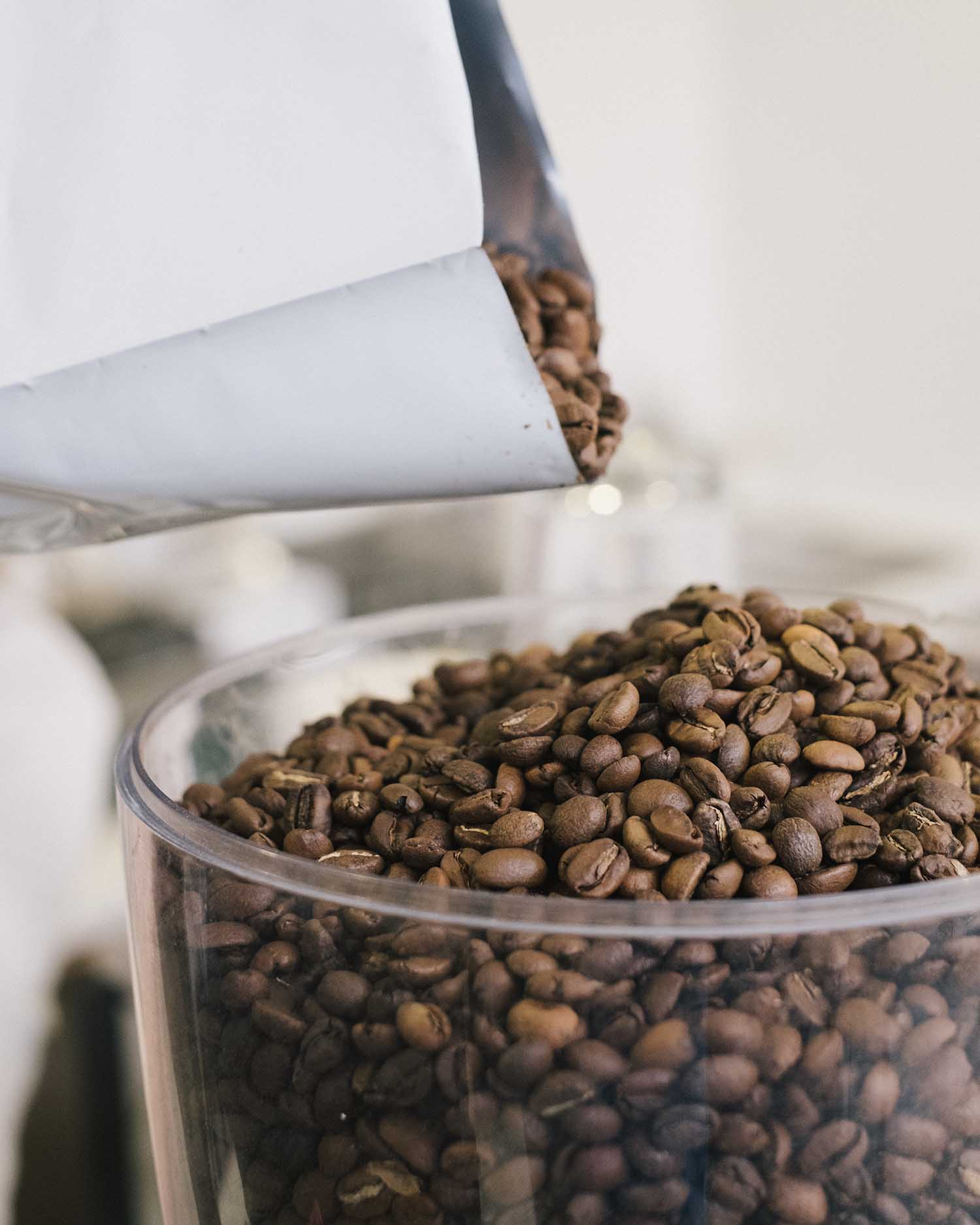 Coffee Beans in Container.jpg
