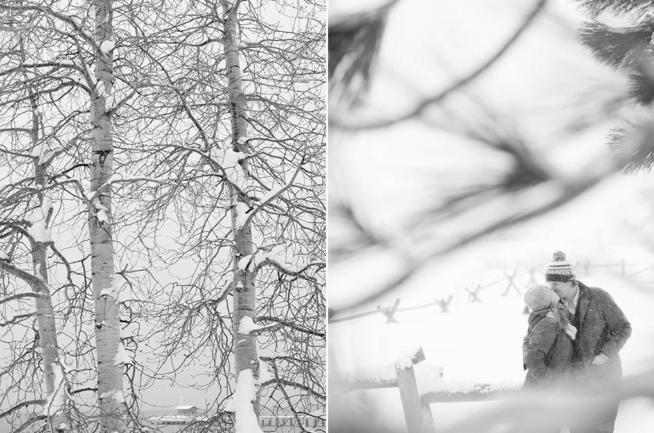 snow_5.jpg