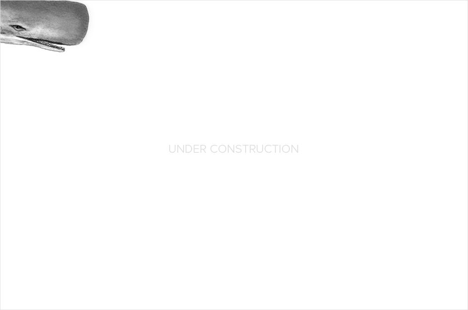 whale_underconstruction.jpg
