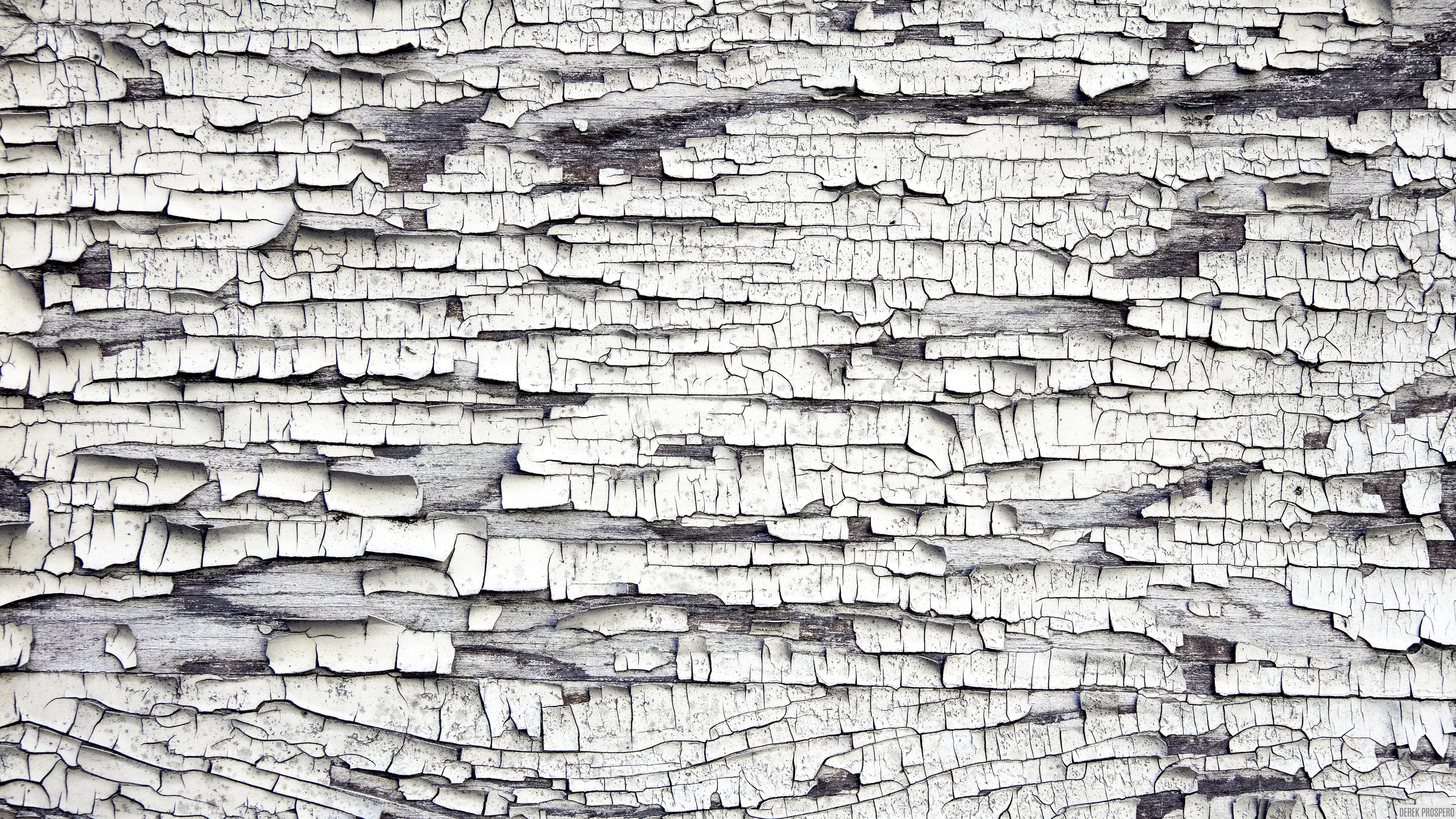 walls-008b.jpg