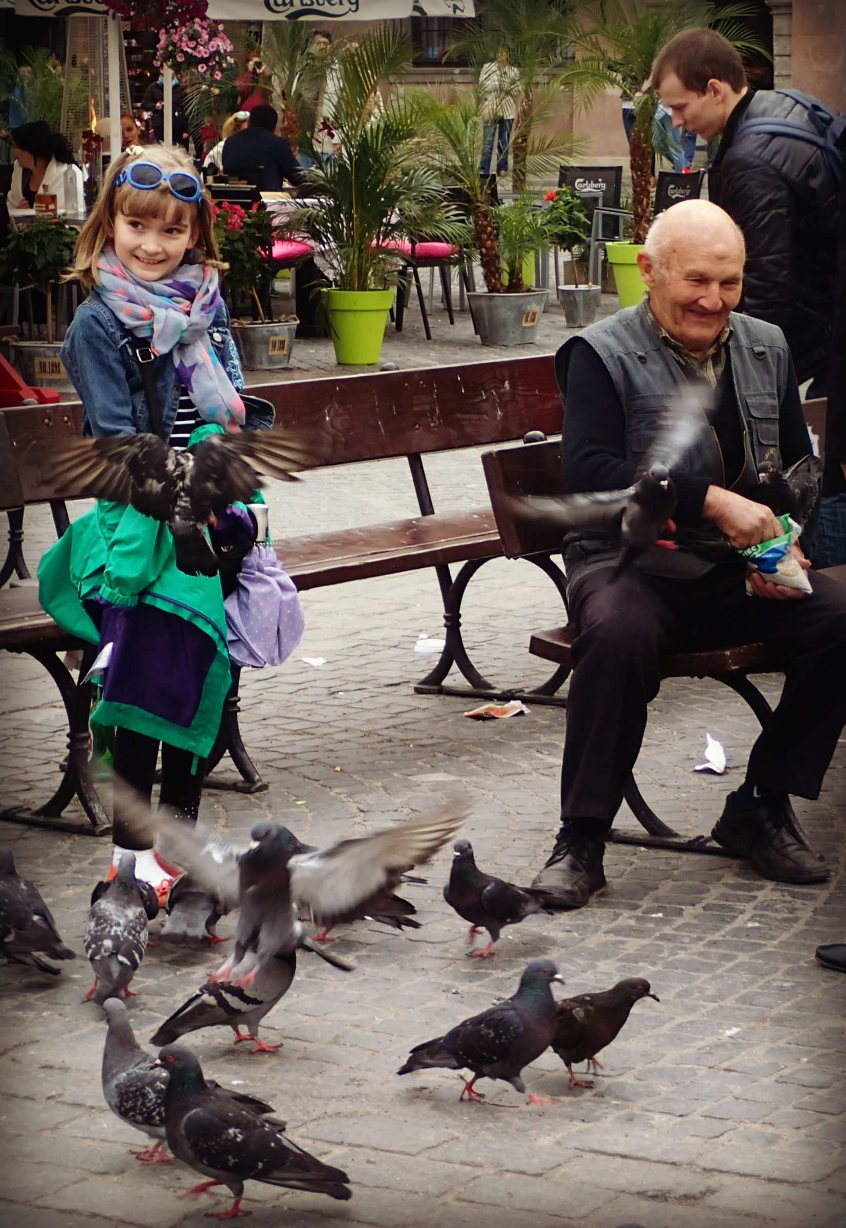 Lord Governor of the Pigeons  This gentleman ruled a large flock of pigeons in the center of Warsaw Old Town.  He was so full of glee to introduce his bird community to everyone. He placed just a few breadcrumbs in the little girl's hand and she started grinning ear-to-ear because of all the flying pigeons. Her enjoyment fueled his enjoyment and it was a lovely sight to see.  Side note: Did you know a group of flying pigeons is called a kit?