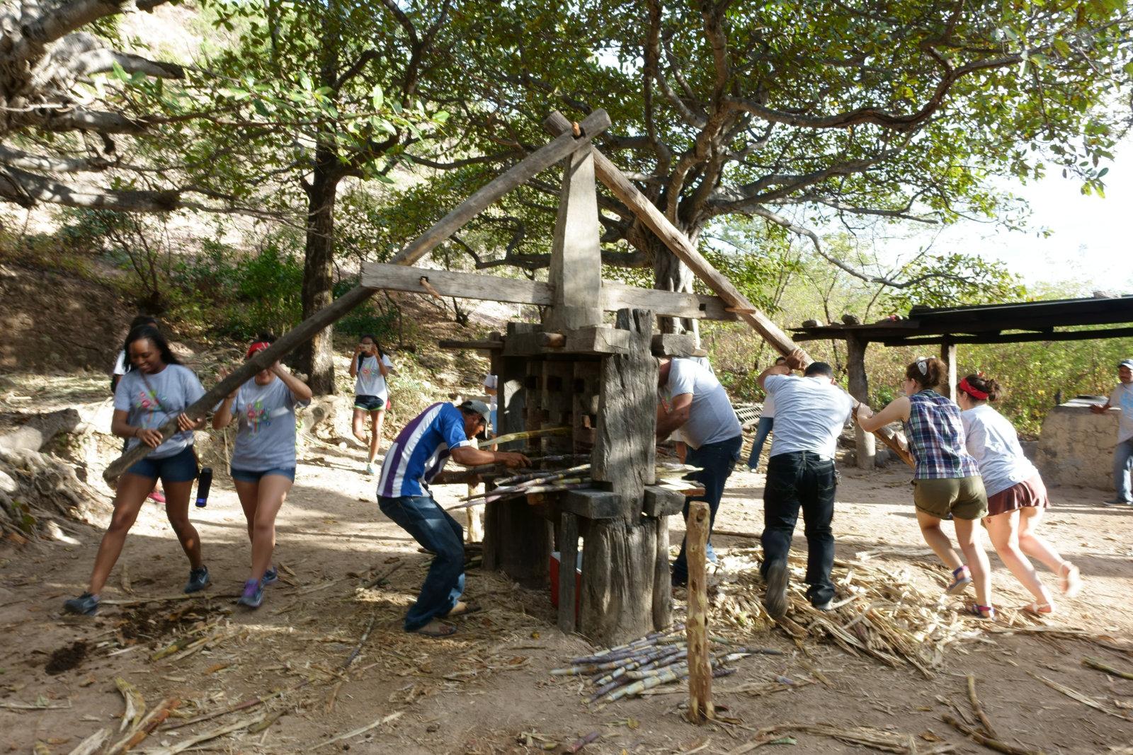 Volunteers help to juice sugar canes in El Rodeito, Honduras.