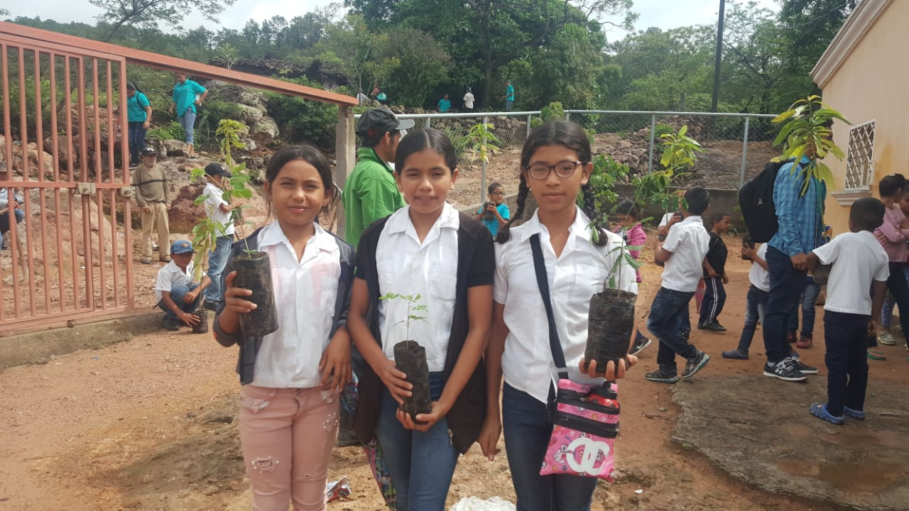 Raices, Arboles y Educacion - *Compliments our Build A High School Campaign. This is a GoFundMe campaign*Planting fruit trees for extra nutrition, and to prevent erosion around water source. *Pesticide education for the community. *Start-up funds to help build the high school. Amount raised: $275 of $1000 goalTo read more, please go here.