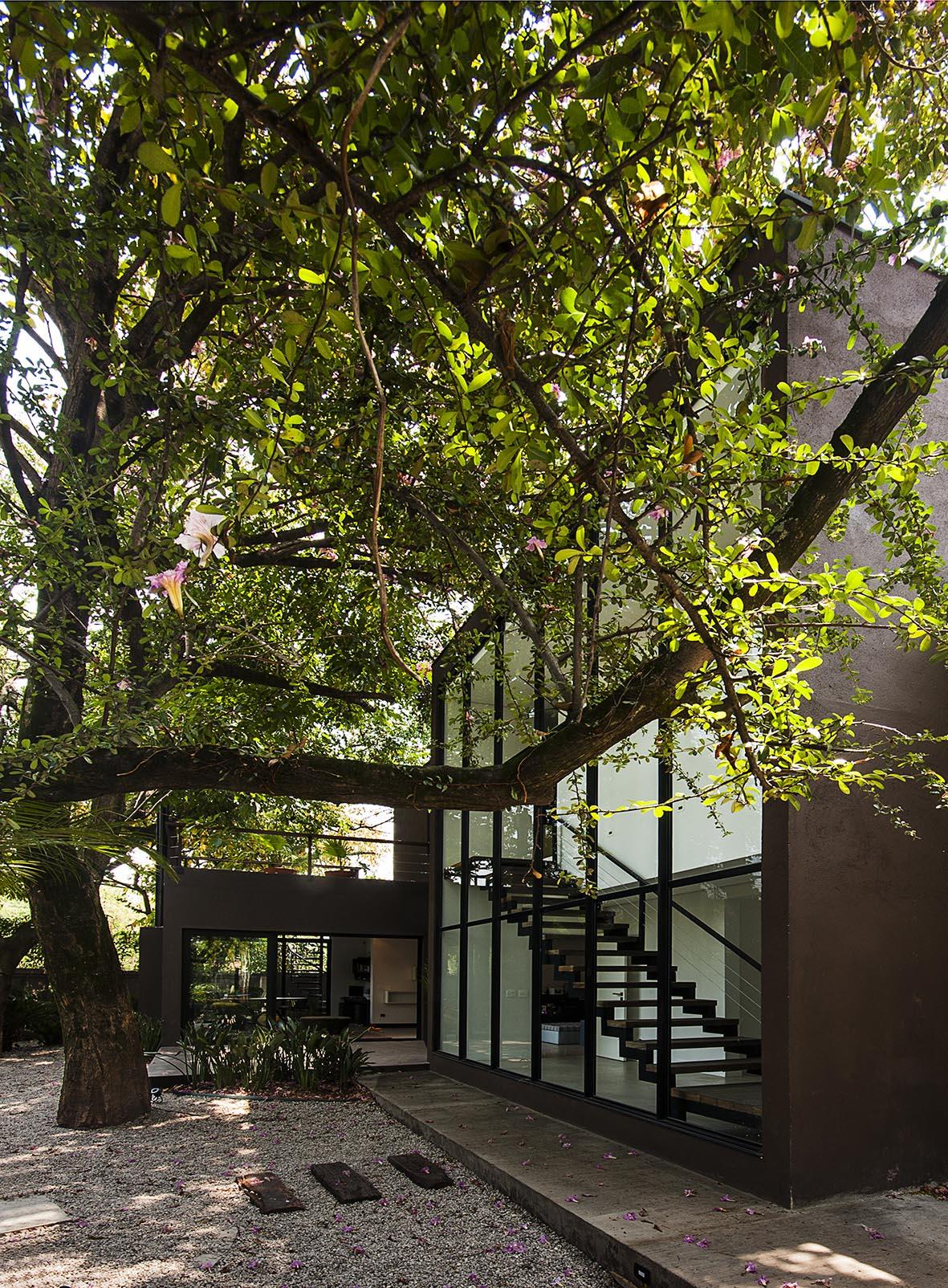 área_externa_casa_vidro_alice_martins_flávio_butti.jpg