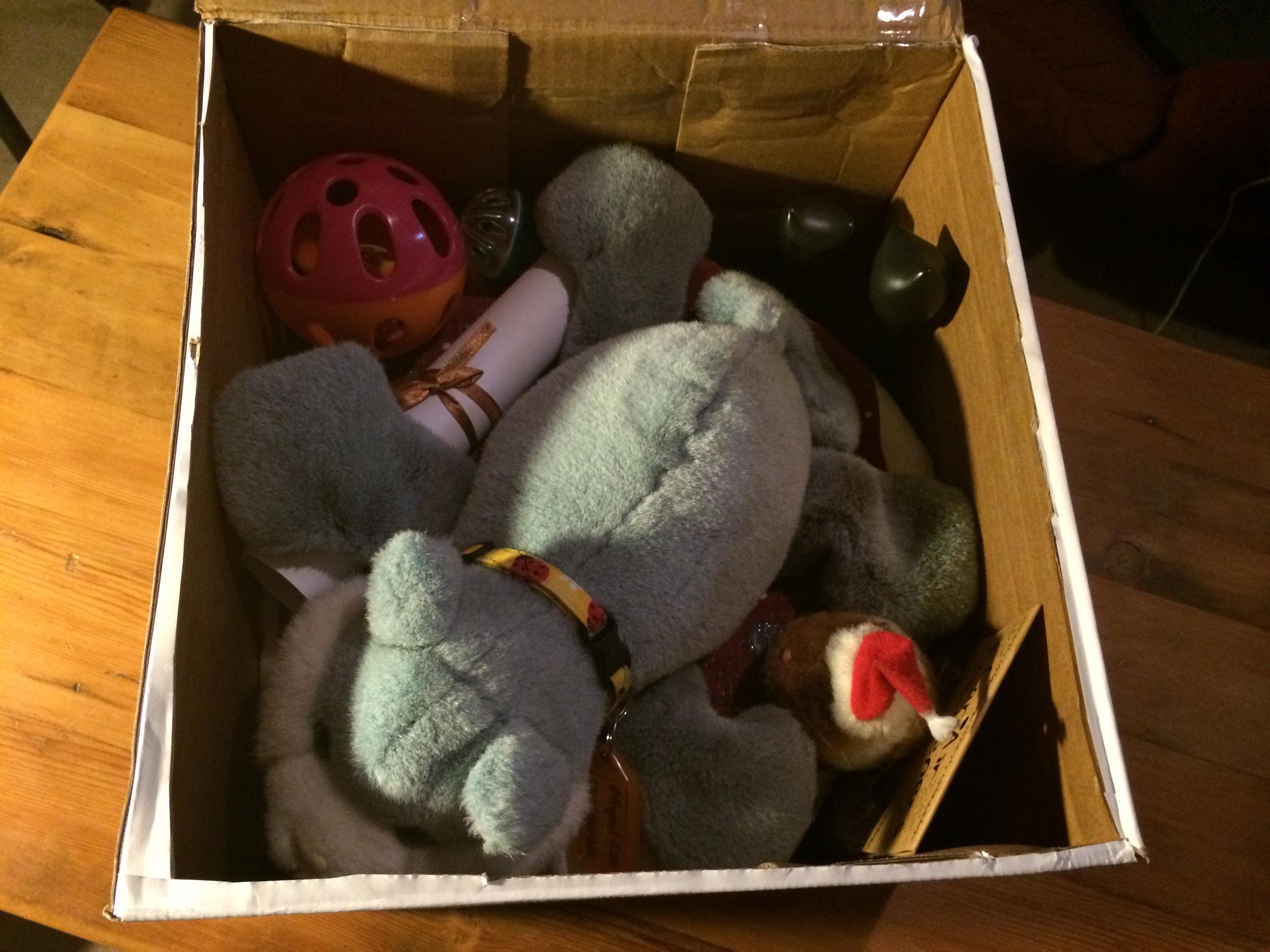 Fluff's box