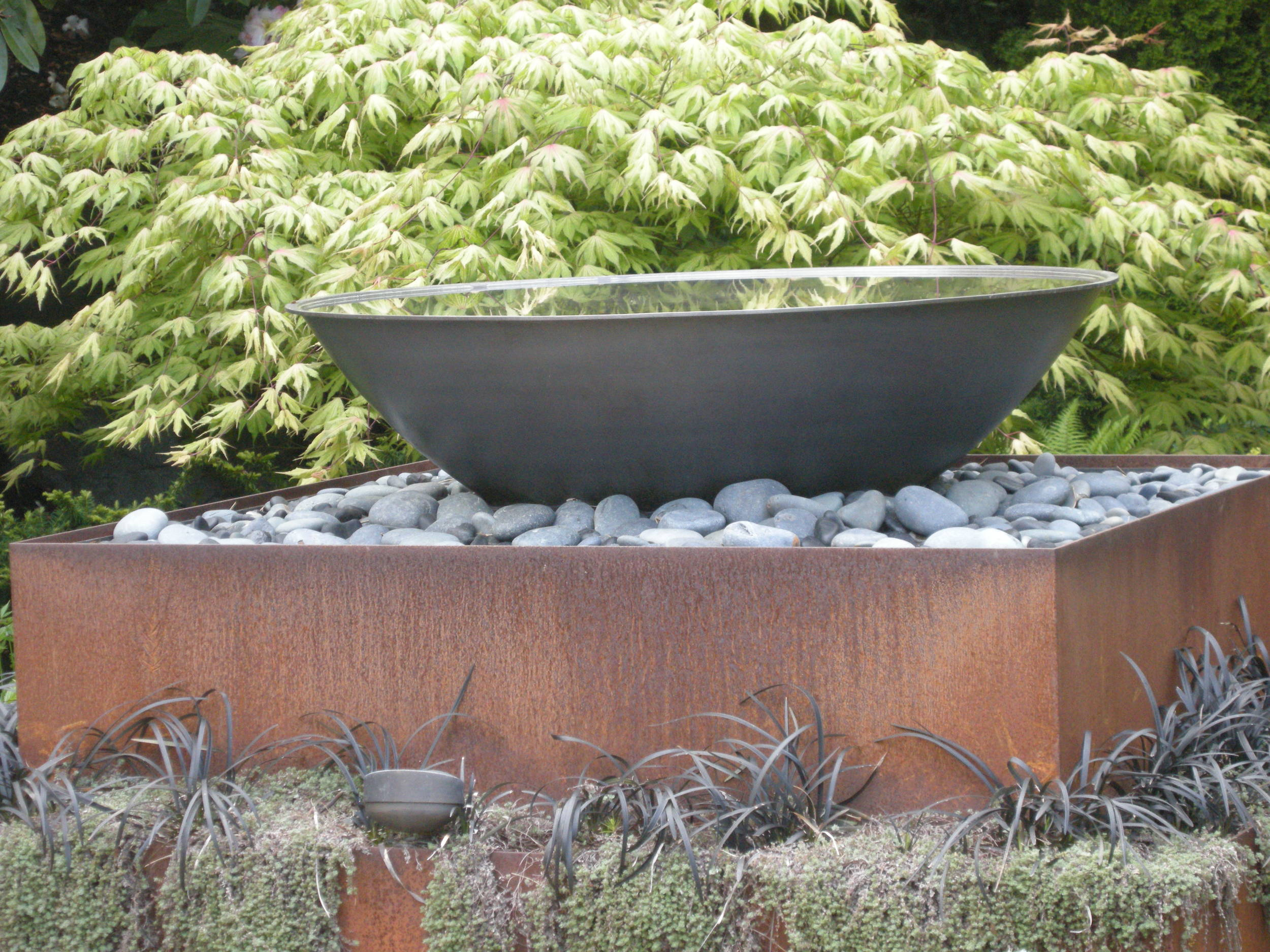 Acer palmatum 'Aka Shigitatsusawa' is ethereal, setting off this water feature at rest.