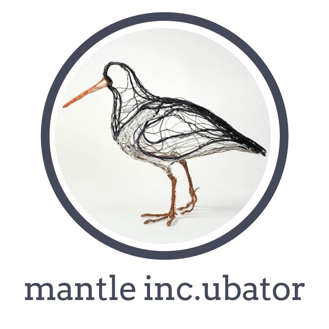 Info-economy Incubator