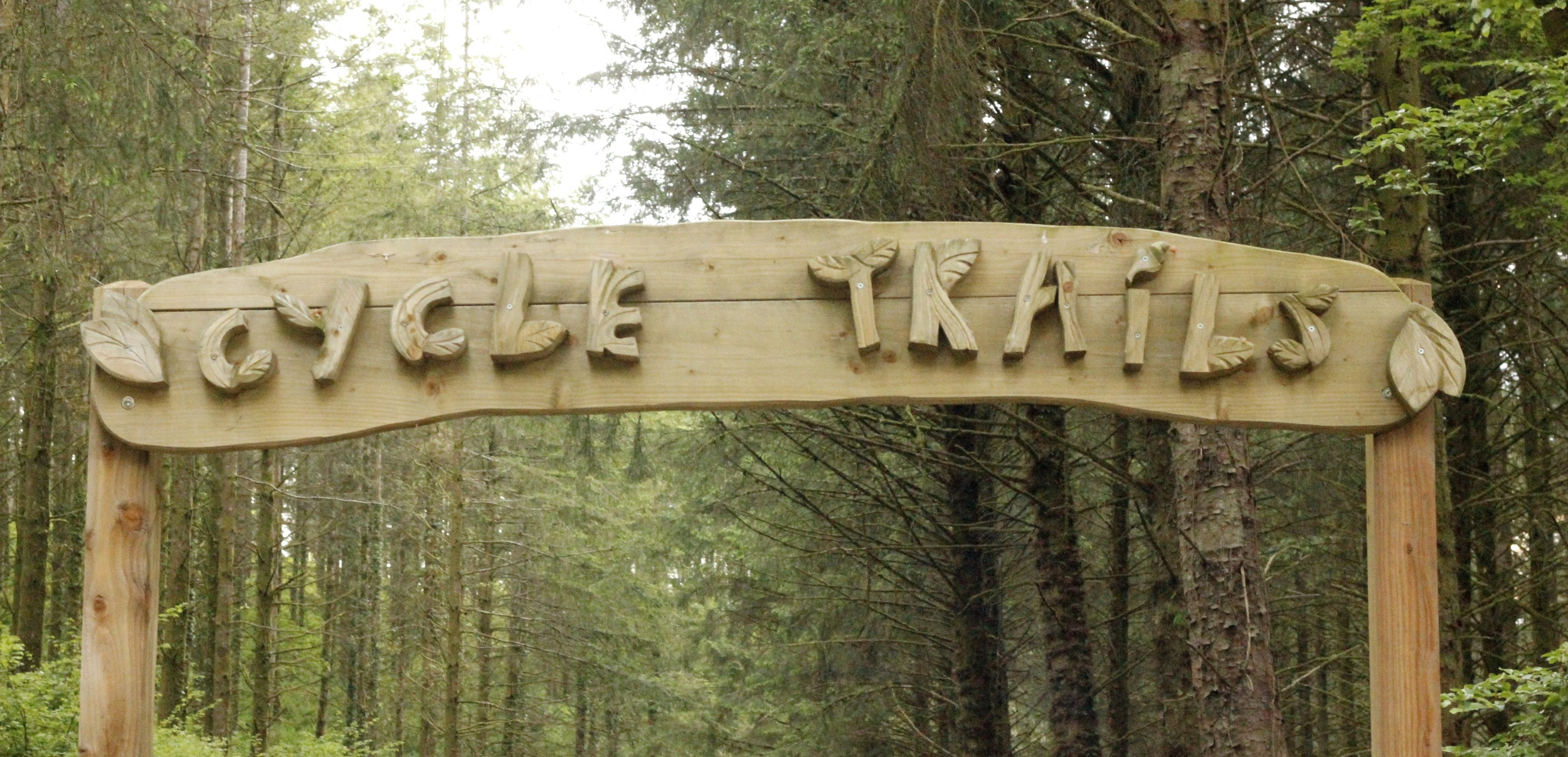 Cycle trails at Cardinham Woods