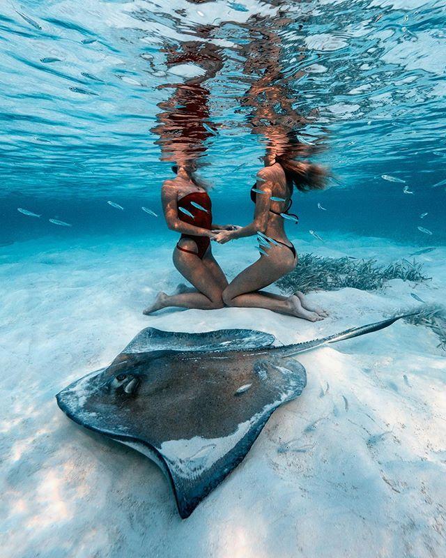 Always making new friends underwater 😉💦 With @sjanaelise 💙