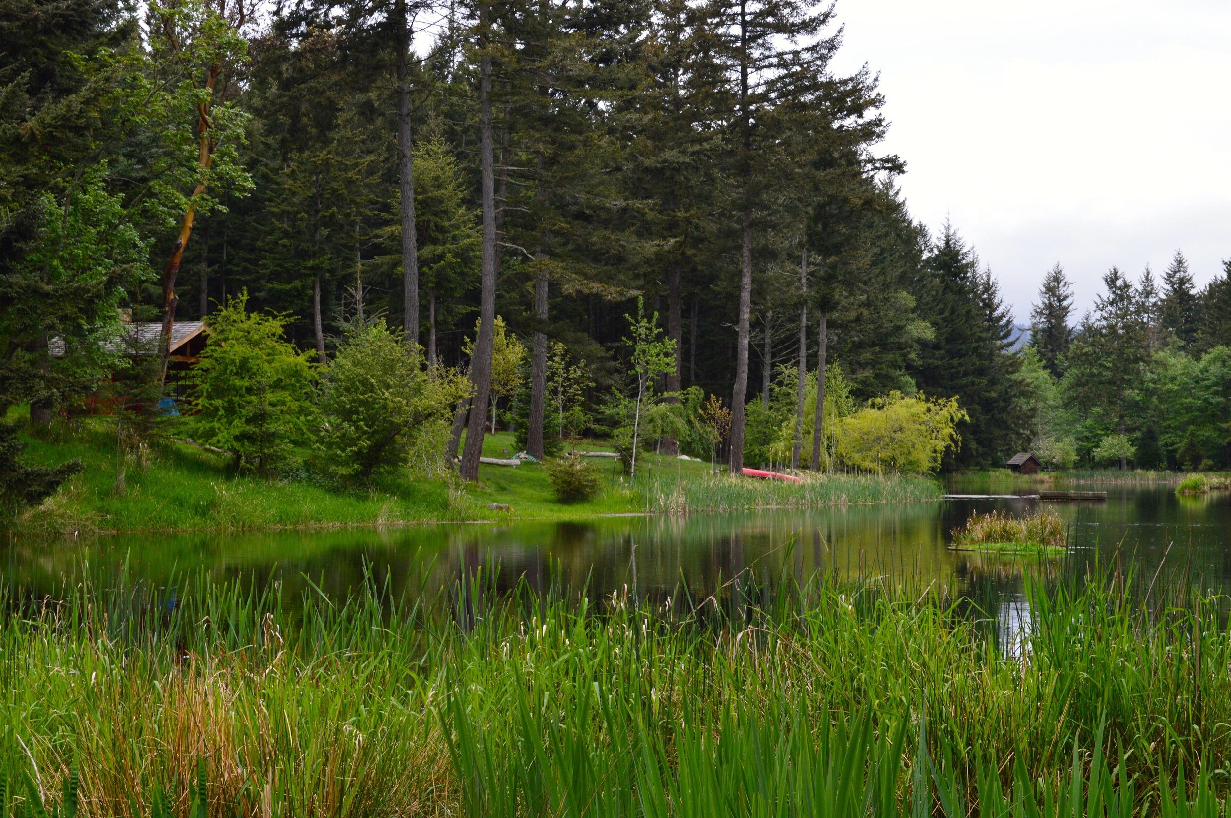 Lake, Cabin, Canoe - what else do you need?