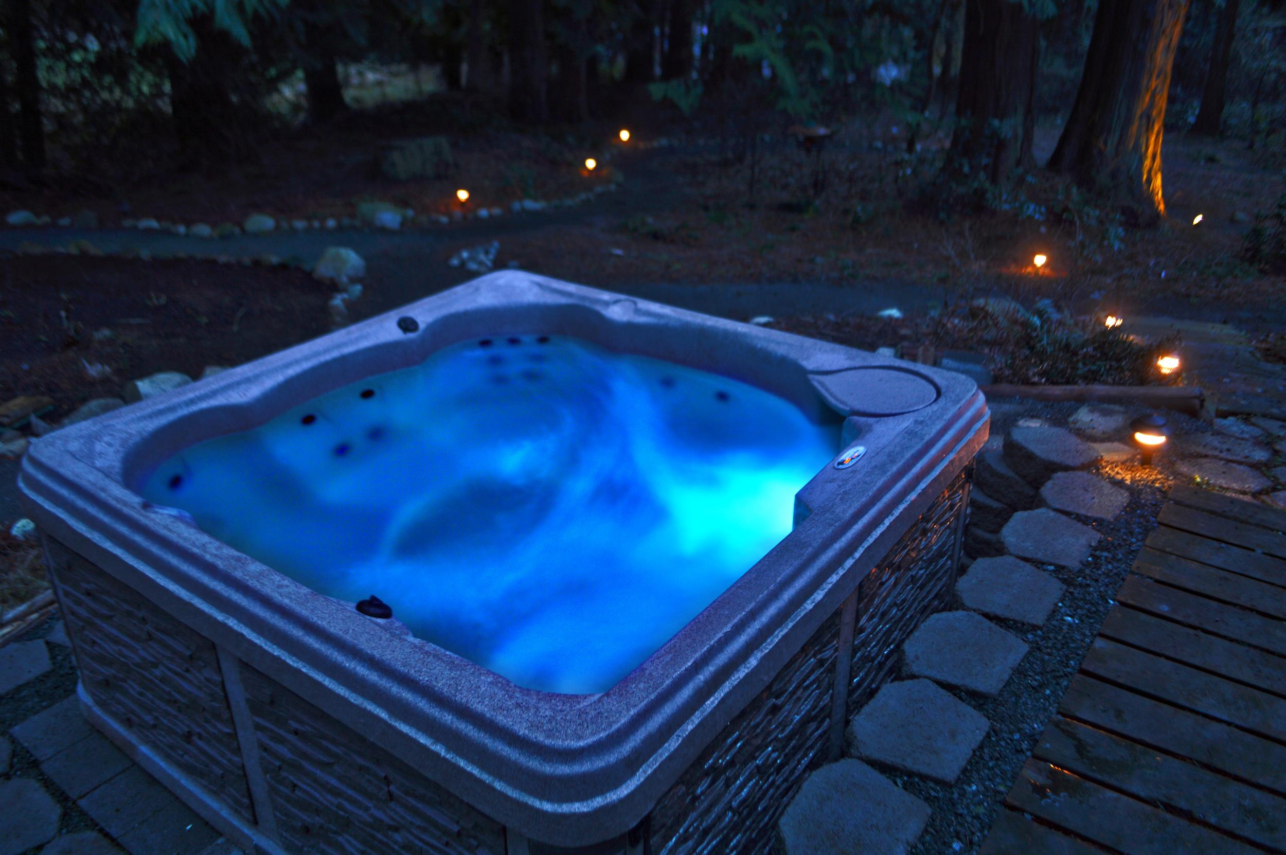 Hot Tub with lounger and LED mood-lighting and landscape lighting through the backyard.