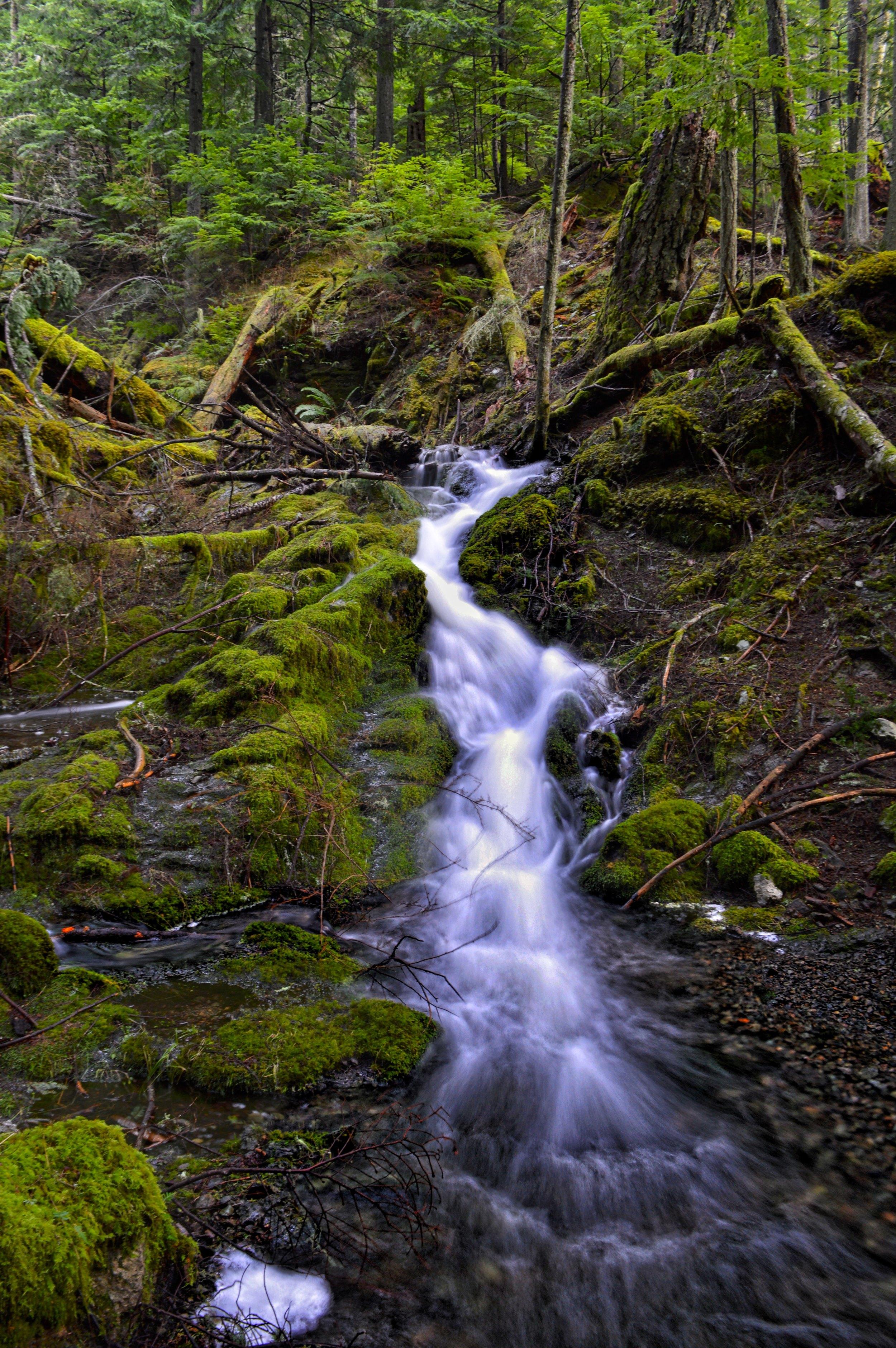 Waterfall in Moran State Park