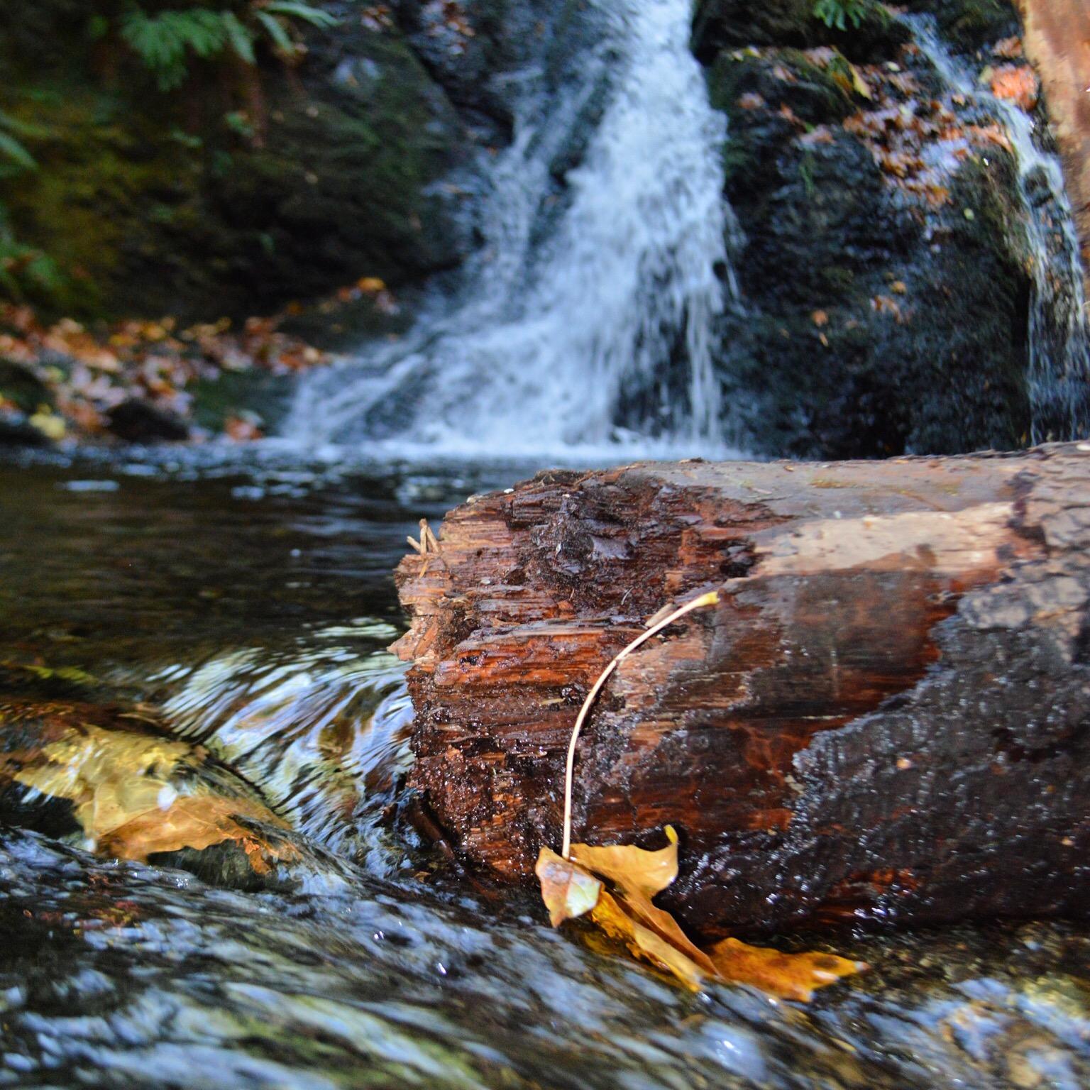 Cascade Falls Trail in Moran State Park