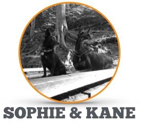 Meet_Sophie_Kane.png
