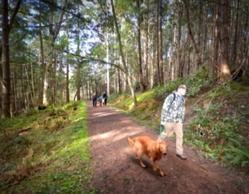 Taking to the Trails on Orcas Island