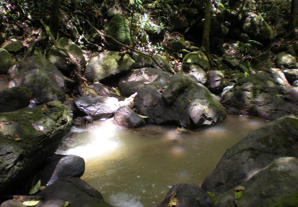 El Cañón Las Bocas se encuentra entre Barranquitas y Comerío. Foto: Marielisa Ortiz Berríos