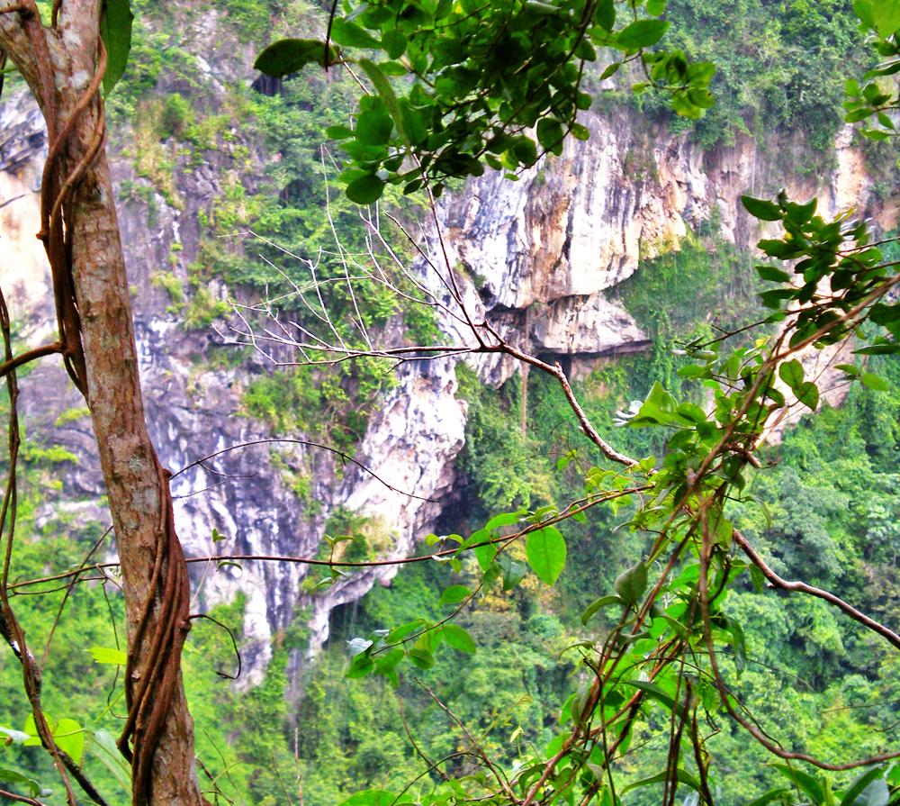 Es importante designar el área como reserva natural.Foto: Marielisa Ortiz Berríos