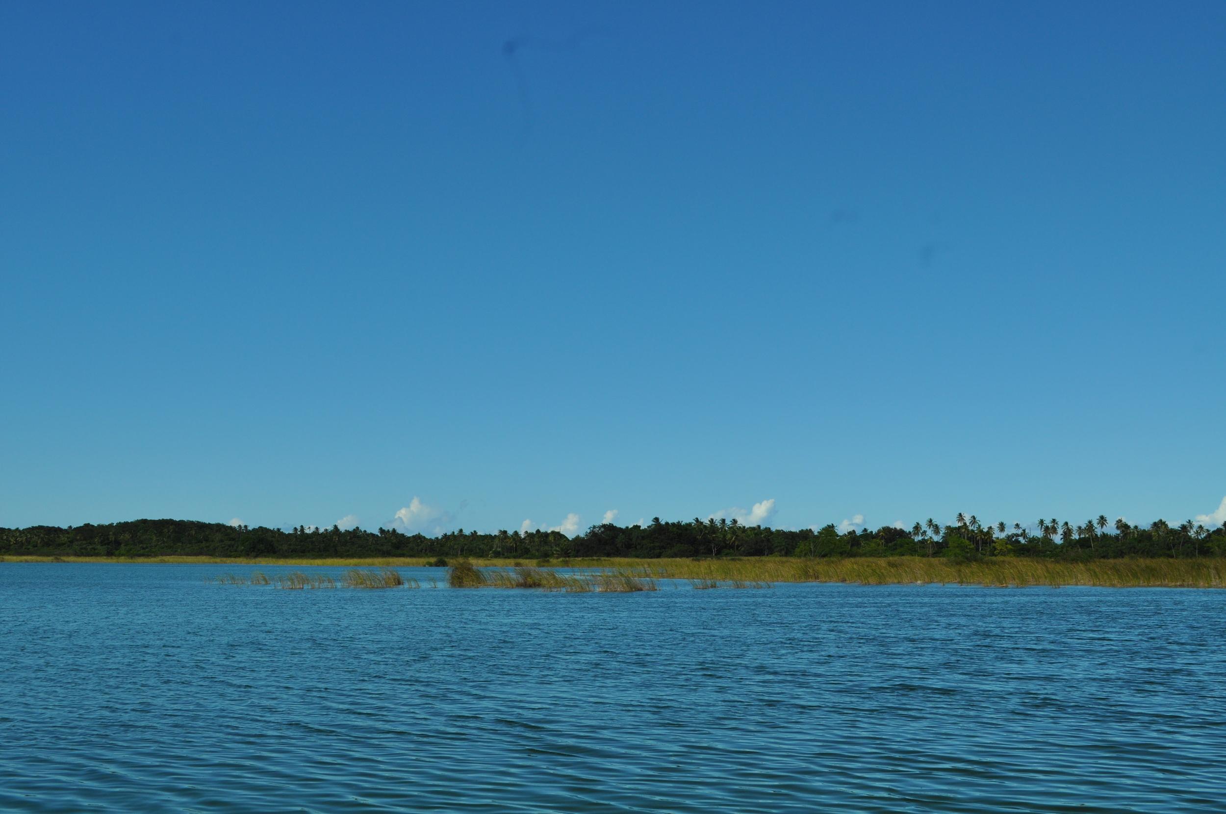 La laguna Tortuguero es la única laguna de agua dulce en la Isla que tiene conexión directa con el océano. Foto: Pamy Rojas
