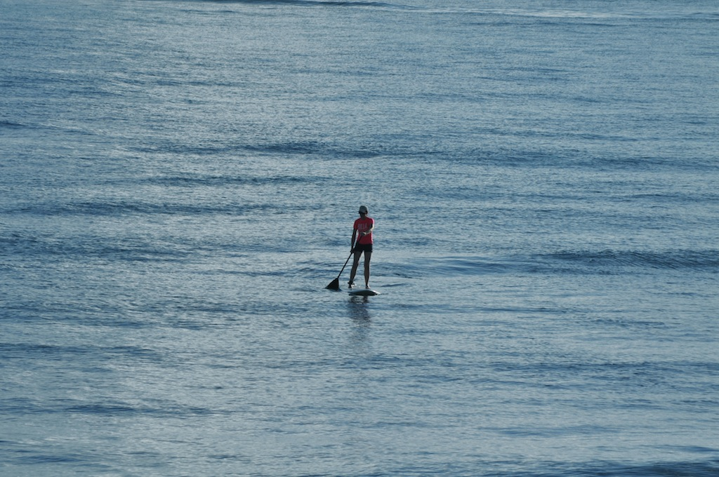 The Puerto Nuevo beach is perfect for paddle boarding.   Dejavutravelpr.com support water sports that do not harm marine life. Look for our  t-shirt  and  bags  designs. Photo: Javier Vélez Arocho