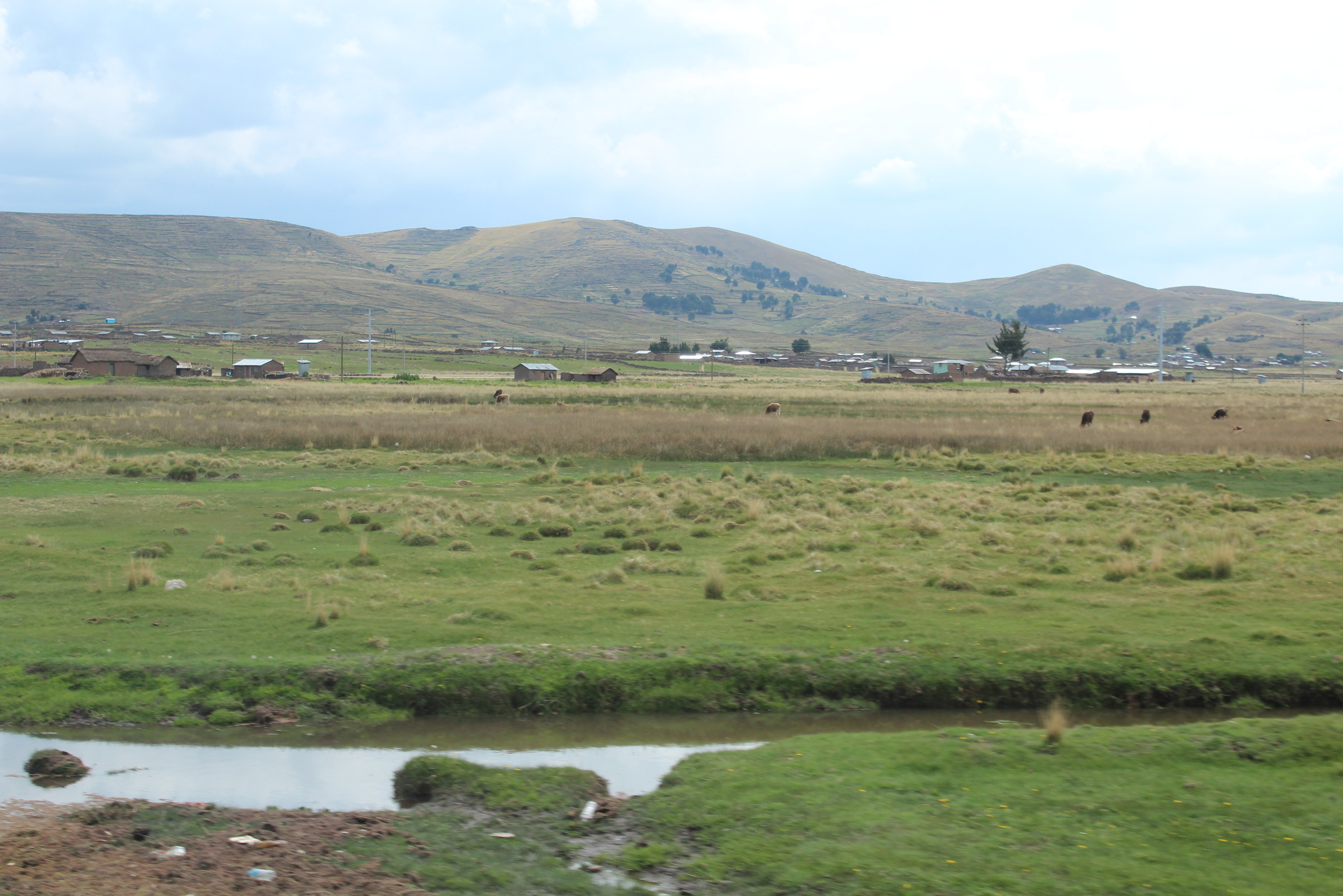 Las casas extremadamente apartadas unas de otras por cuerdas y cuerdas de un verdor plano. Foto: Javier Vélez