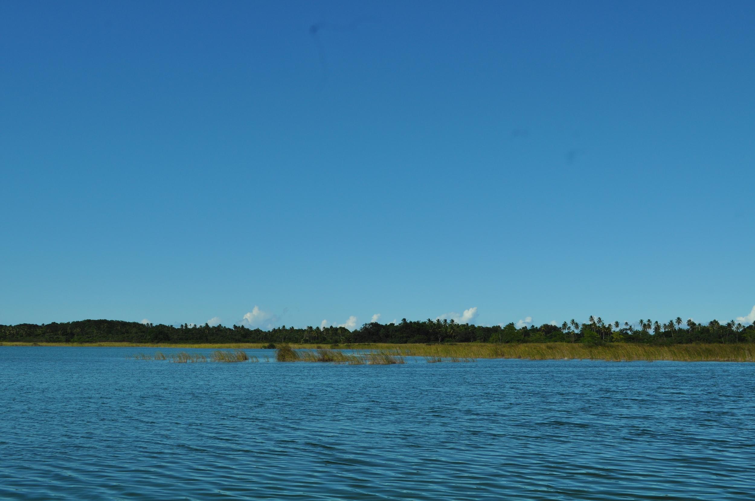 El mejor momento para visitar la laguna Tortuguero es temprano en la mañana, cuando el sol es tenue y los pájaros todavía cantan. Este espacio natural es un remanso de paz.Foto: Pamy Rojas