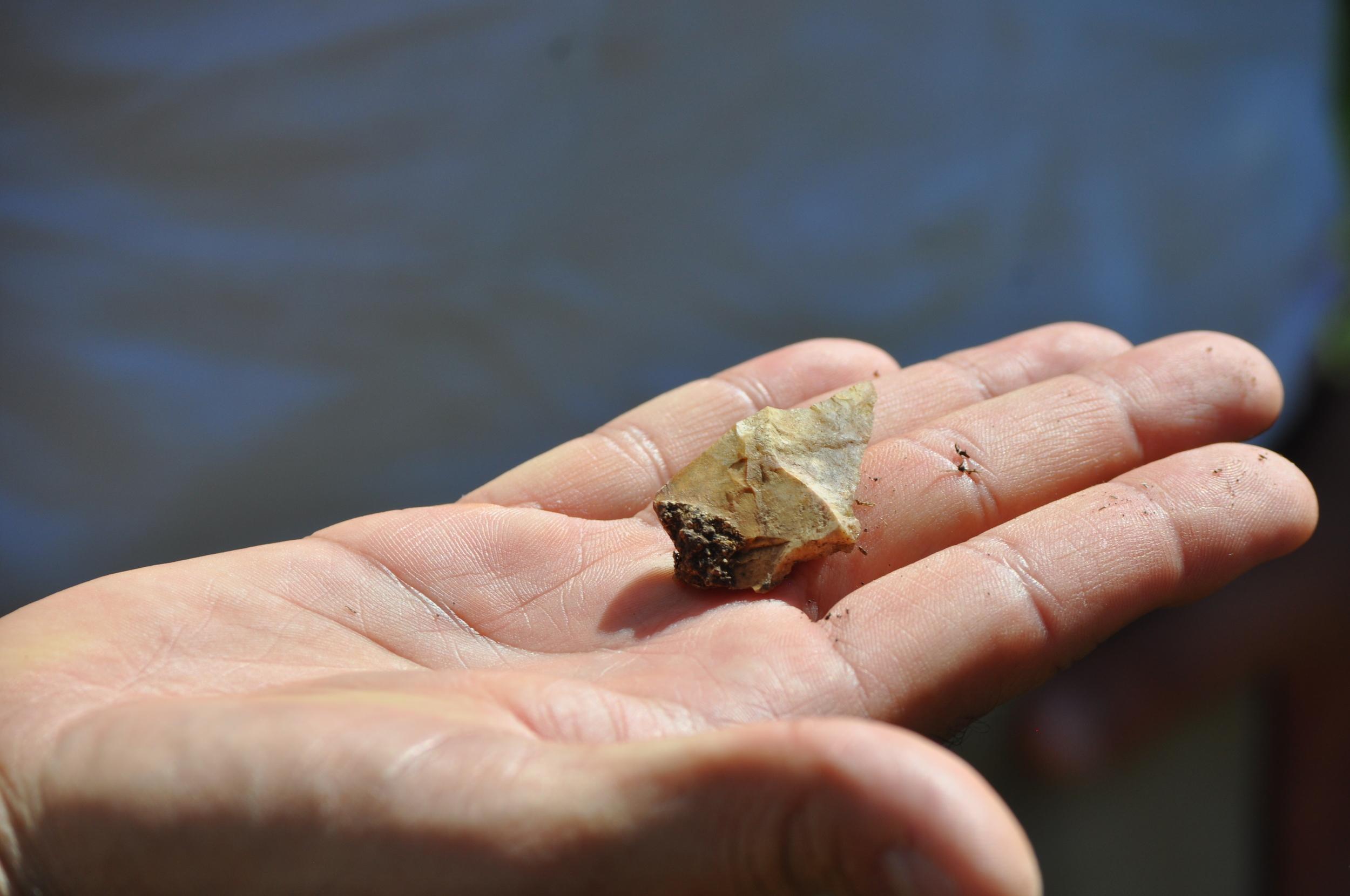 Ray nos mostró pedazos de sílex que encontró en el suelo. Los taínos usaban este tipo de piedra para puntas de flecha. Foto: Pamy Rojas