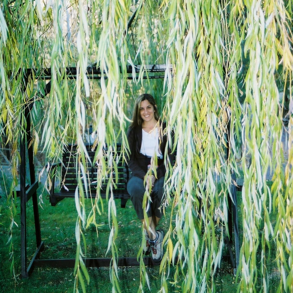 Los árboles que adornan la Casita de las Cabrejas son majestuosos. Foto: Javier Vélez Arocho