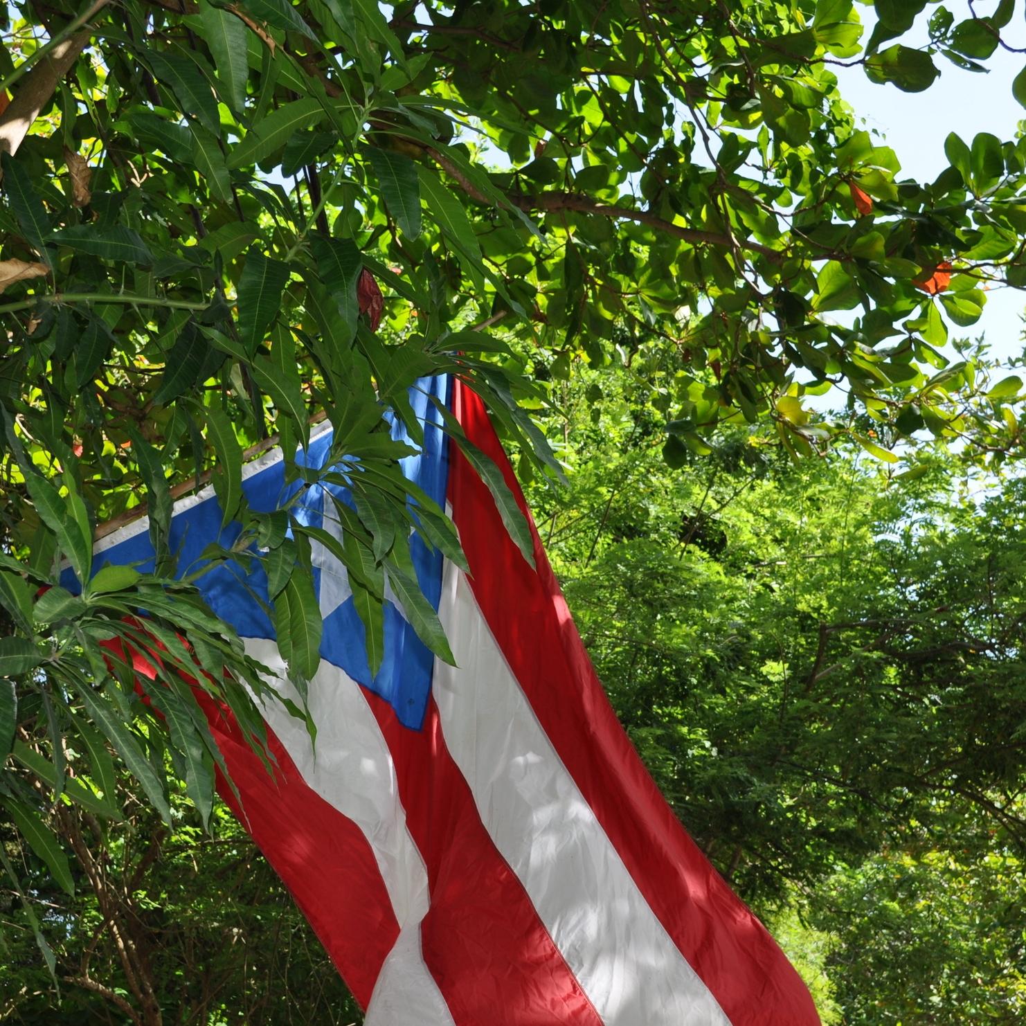 Ya en Maunabo, por la carretera #3 (exactamente en el km. 109.02)nos detuvimos en un puesto de viandas muy fácil de encontrar; tiene una inmensa bandera de  Puerto Rico  que marca su localización. Foto: Pamy Rojas