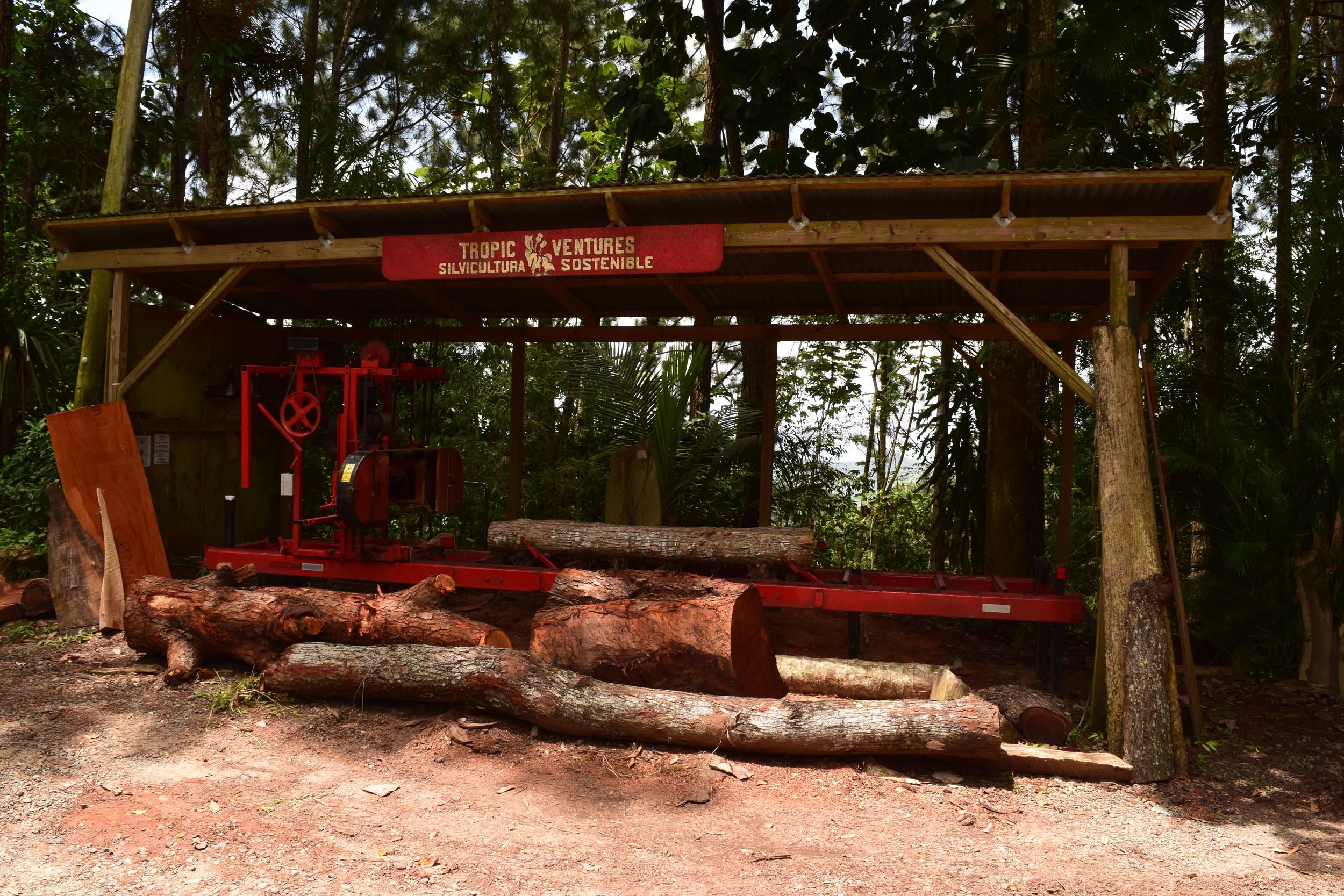 Las Casas de la Selva en Patillas es una reserva de investigación y un proyecto de cultivo de árboles para mantener los bosques de  Puerto Rico . Para poder visitar este lugar es necesario reservar a través de la página de internet:  Eye on the Rainforest .   Foto: Alejandro Rodz. Rojas