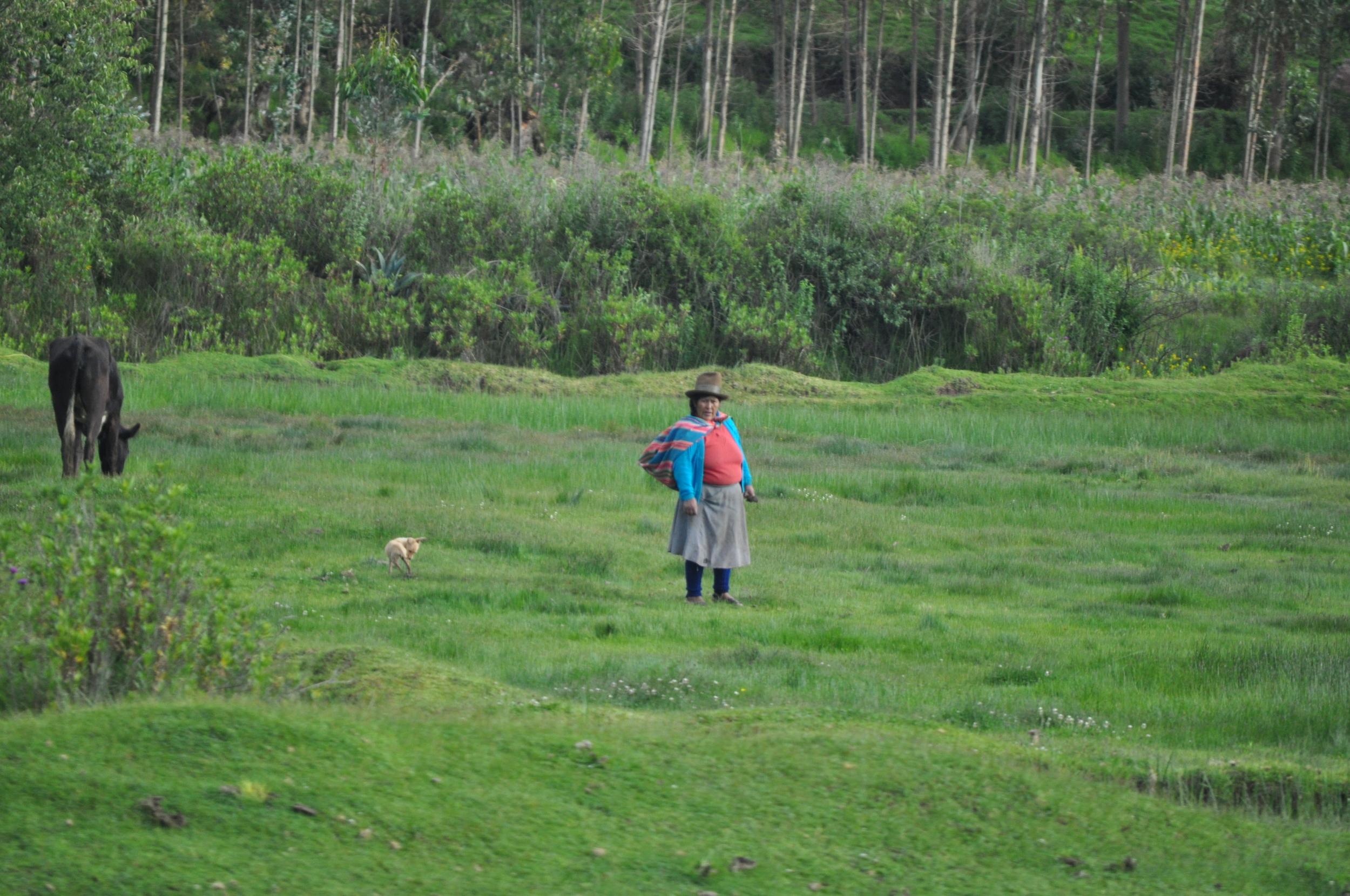 Mujeres, niños y hombres trabajando en la tierra. Foto: Pamy Rojas